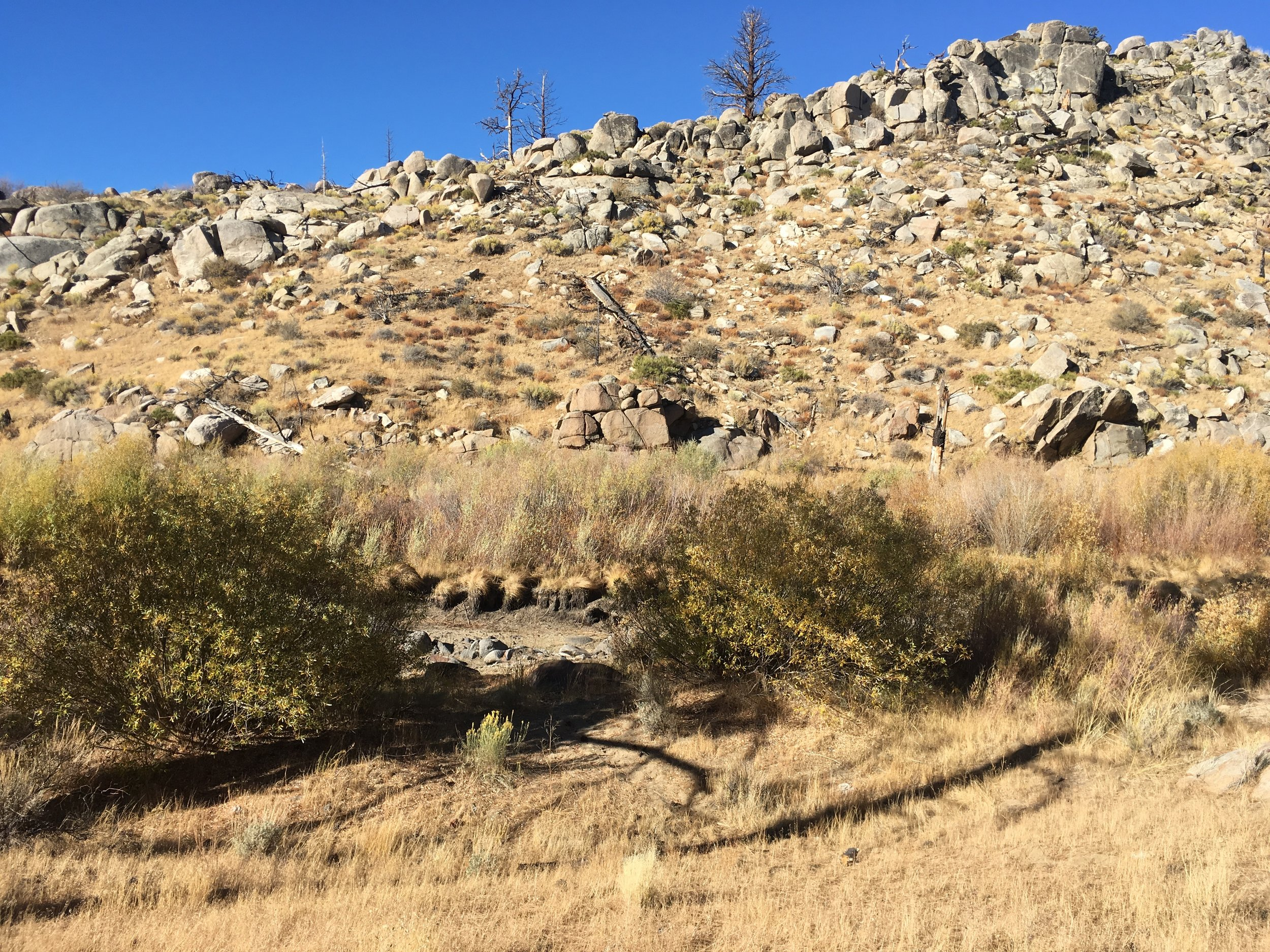 The south fork of the Kern River dry, 5 miles ago it was flowing.