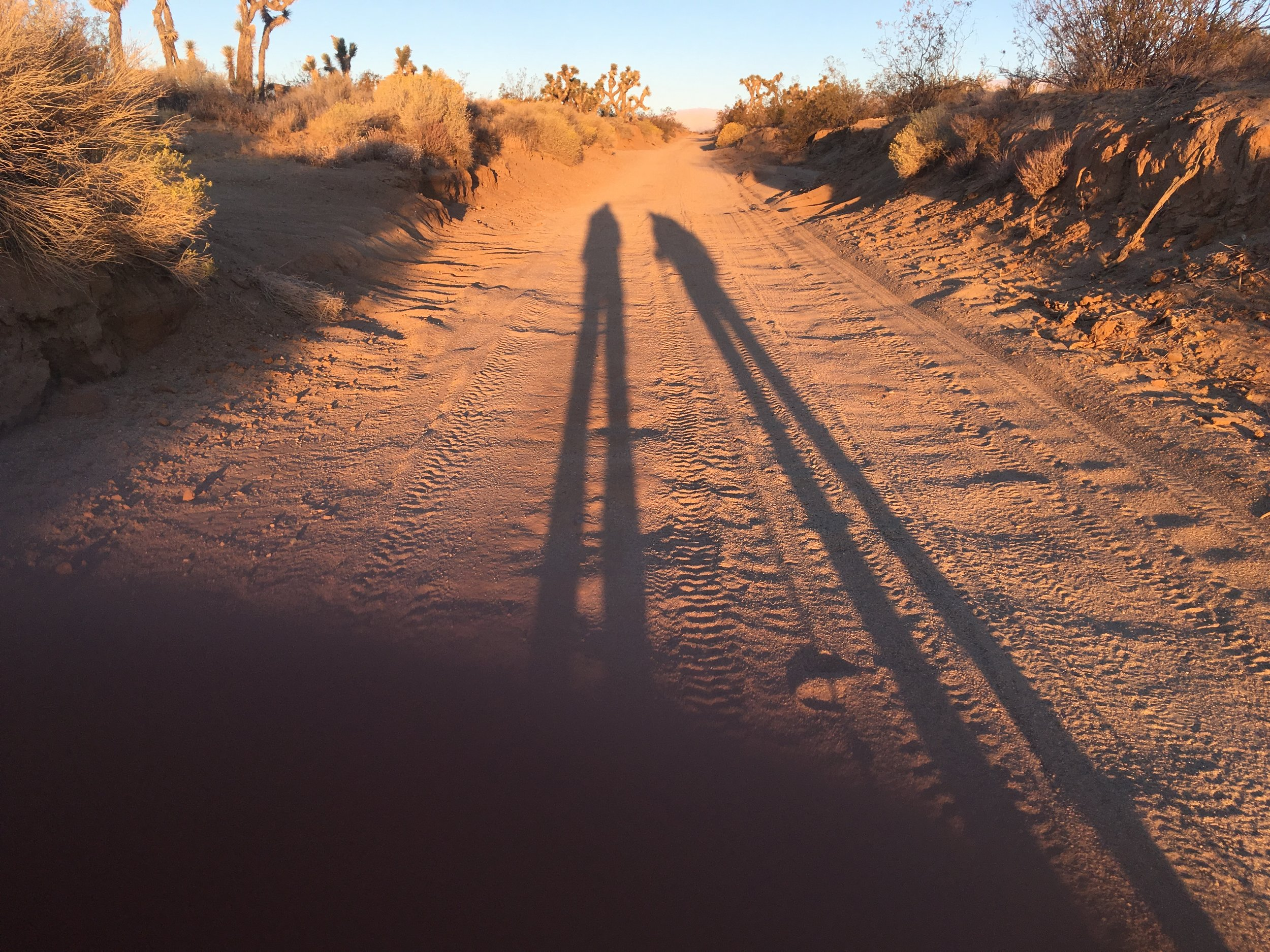 Shadowgram capturing our dawn hiking in the desert.