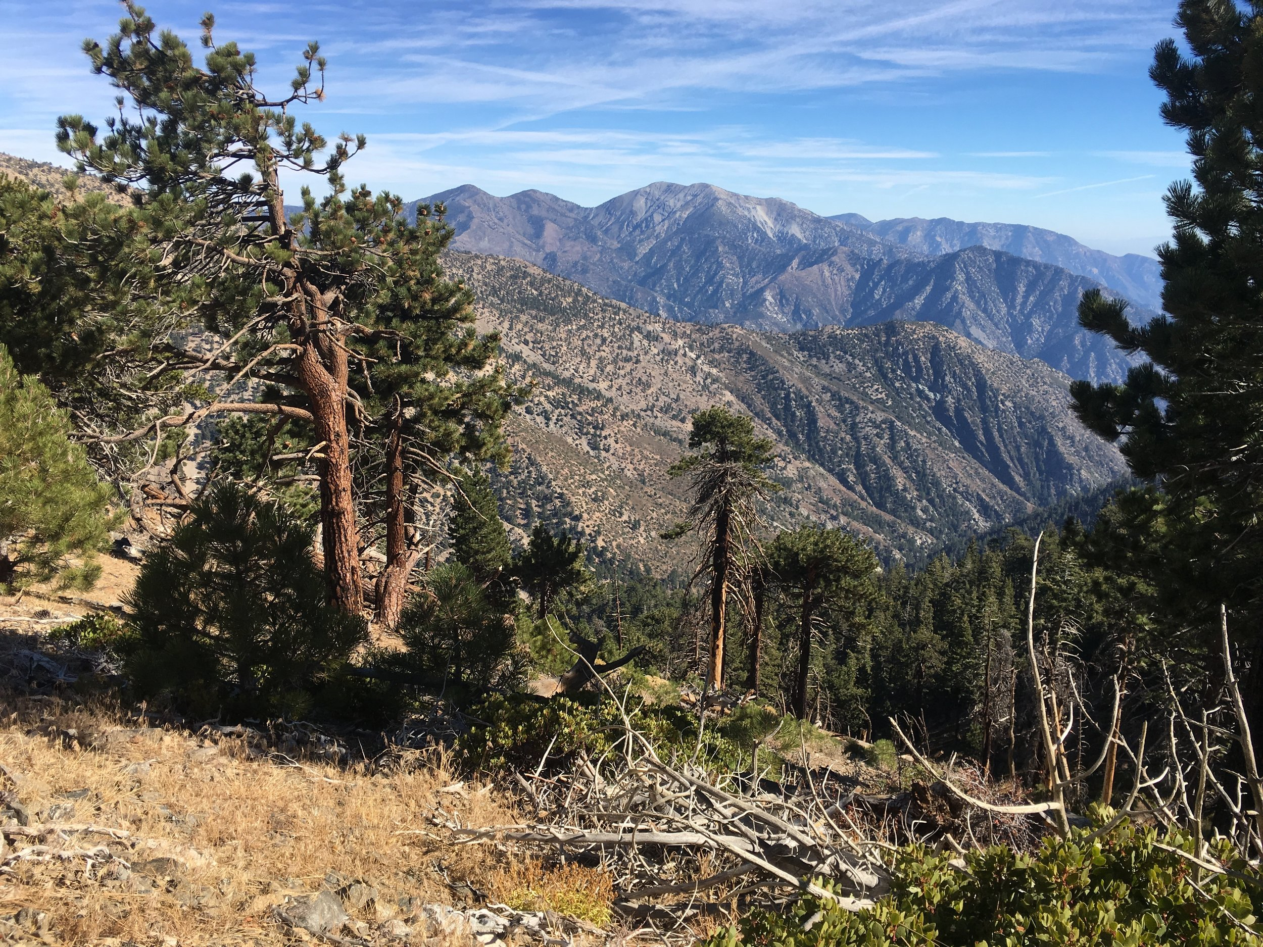 The view of Mt. Baldy and the San Antonio Massif.