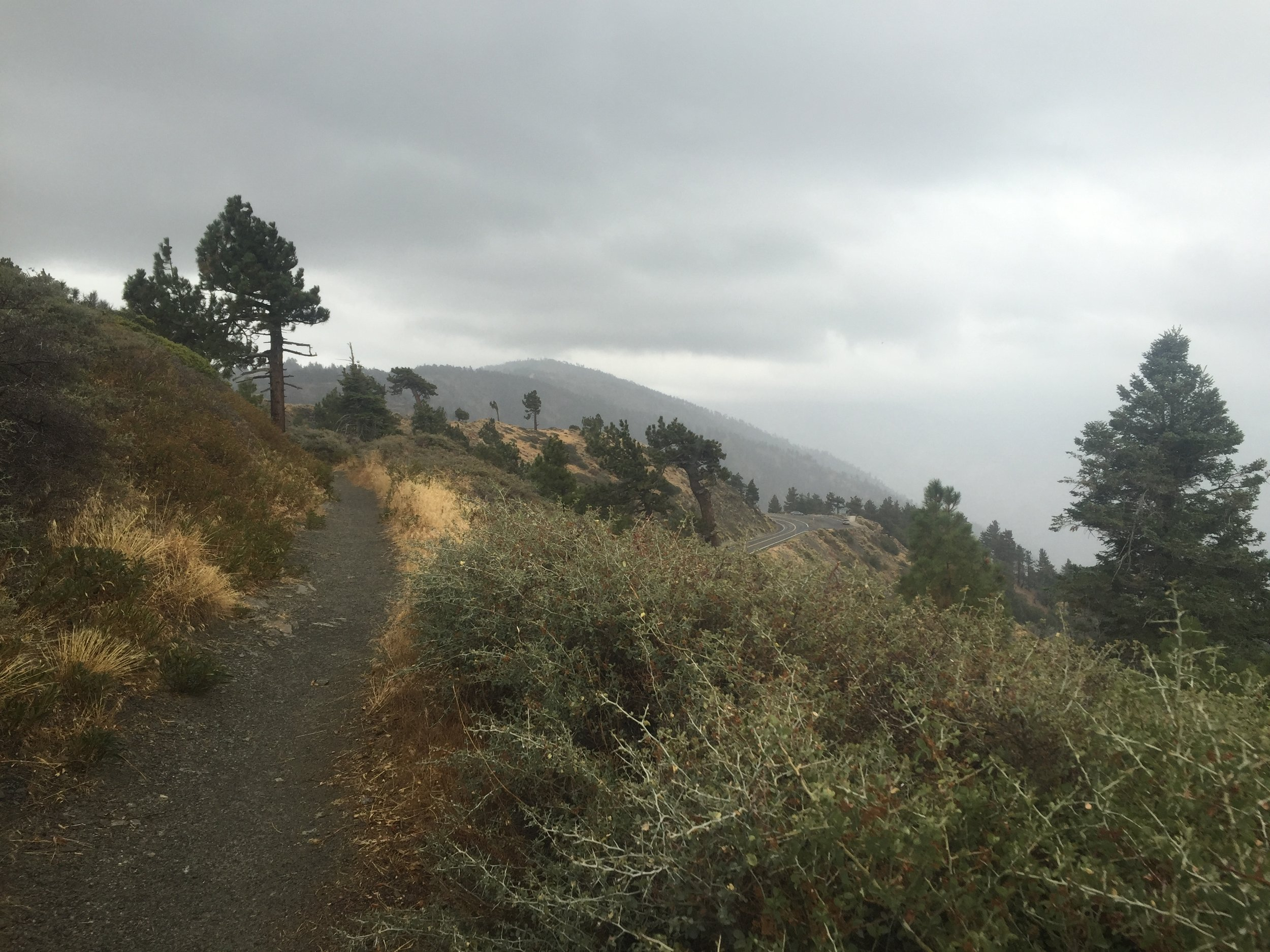 A rainy mini-section hike of the PCT on our otherwise zero day