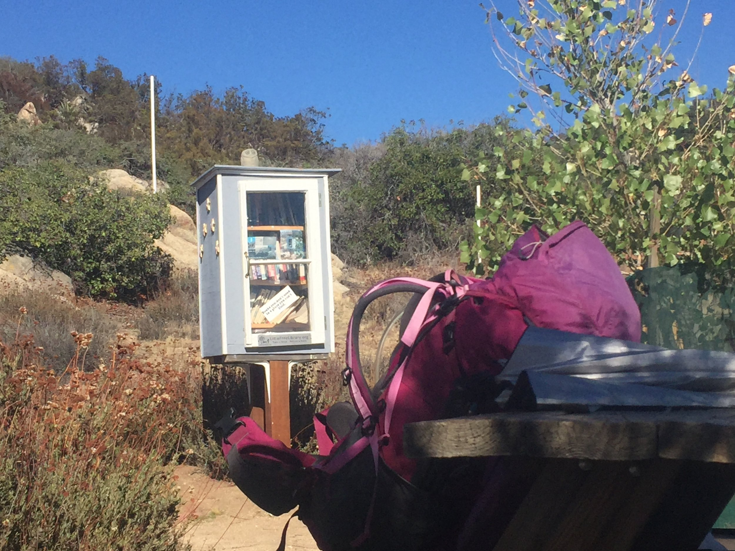 Little free library at Mile 145