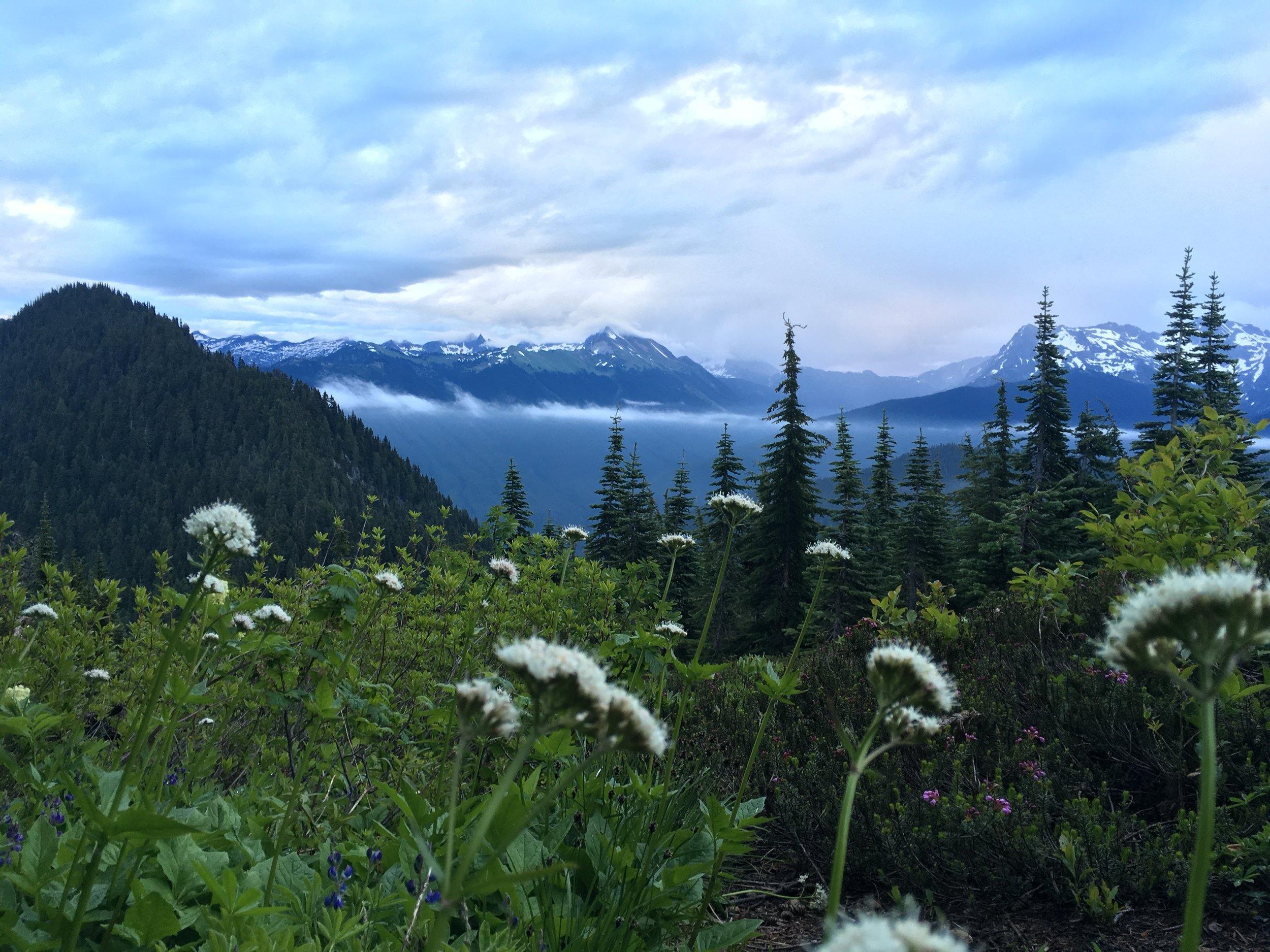 Dolly Vista Ridge