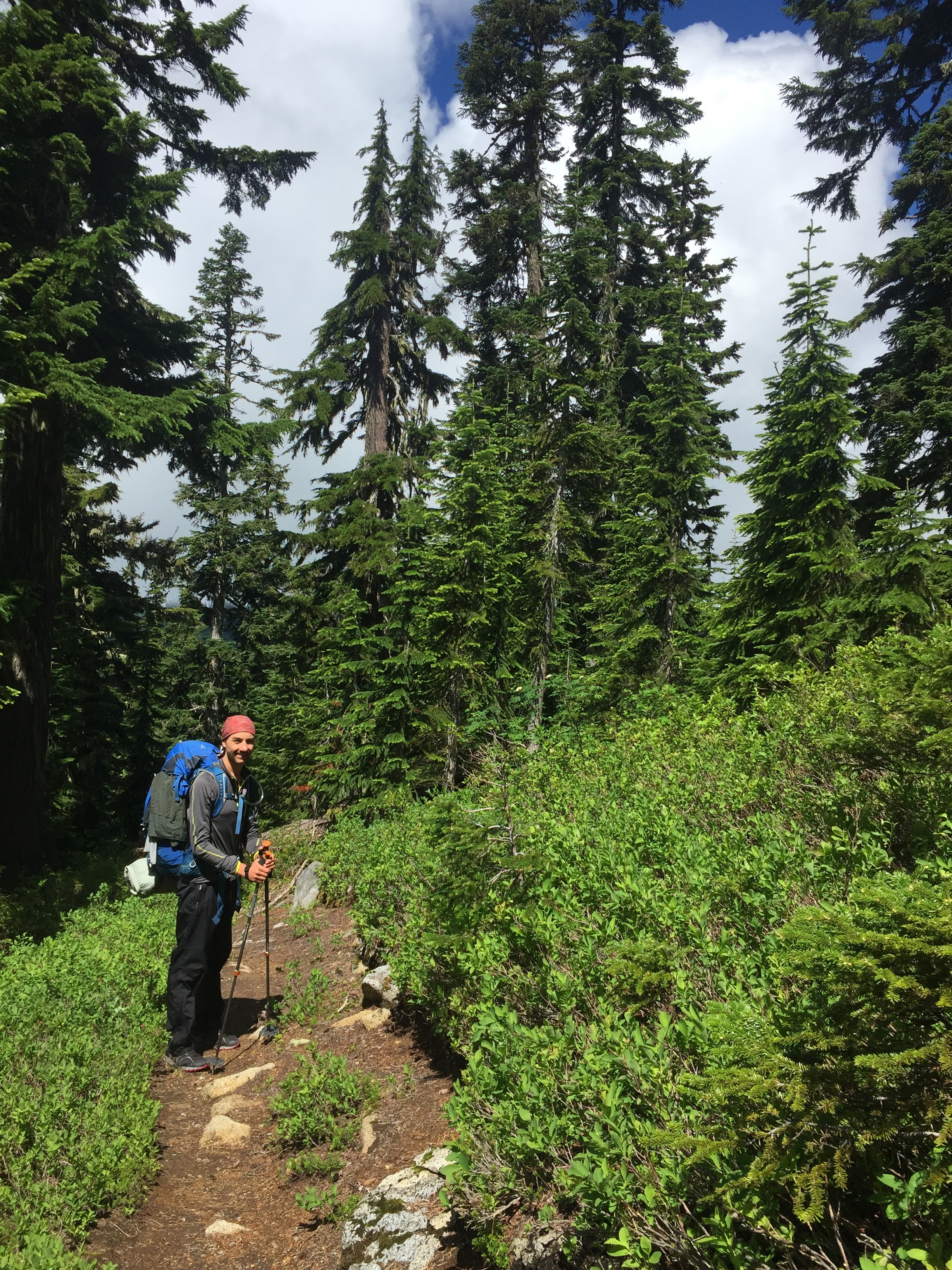 PCT Day 14 A standing on trail w greenery and trees vert.JPG