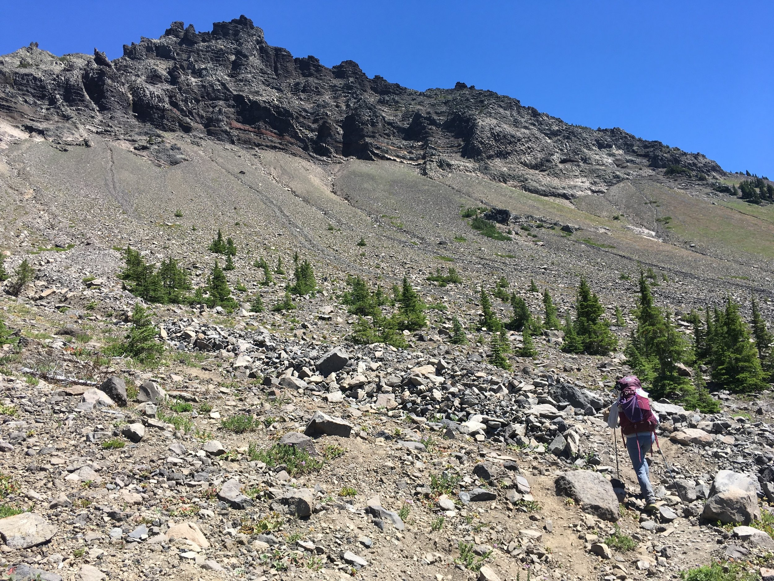 PCT Day 36- C on the South side of three fingered Jack..JPG