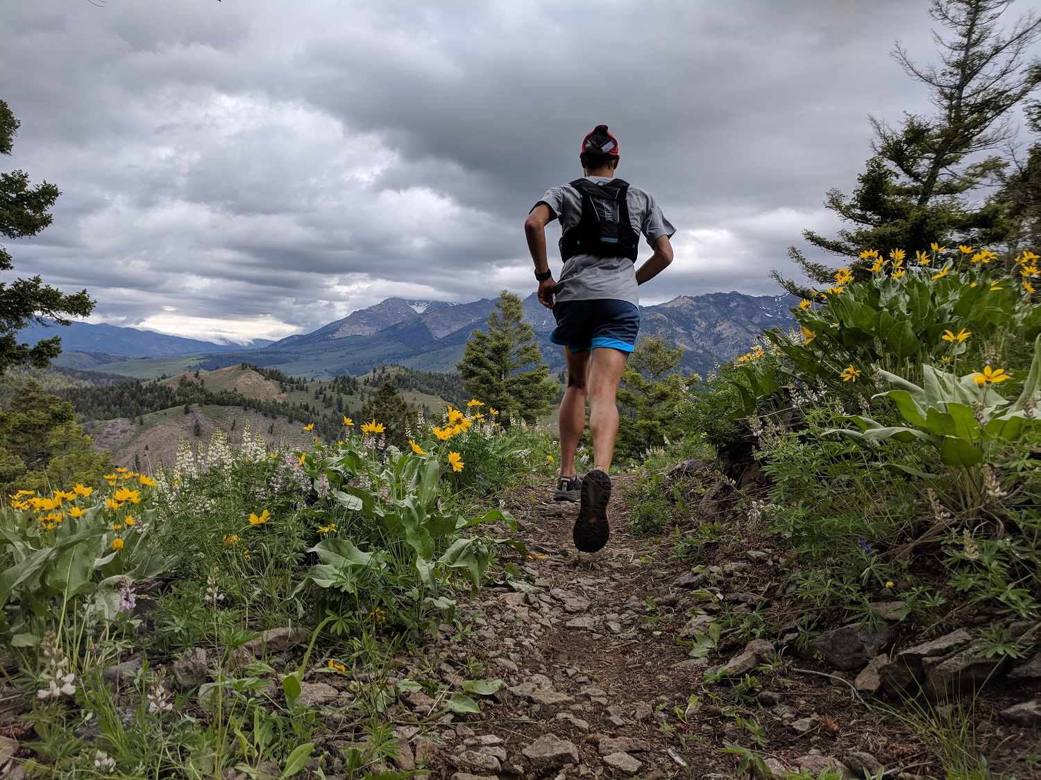 Andrew flying through the arrowleaf balsamroot so ubiquitous to the mountain trails around Ketchum ID