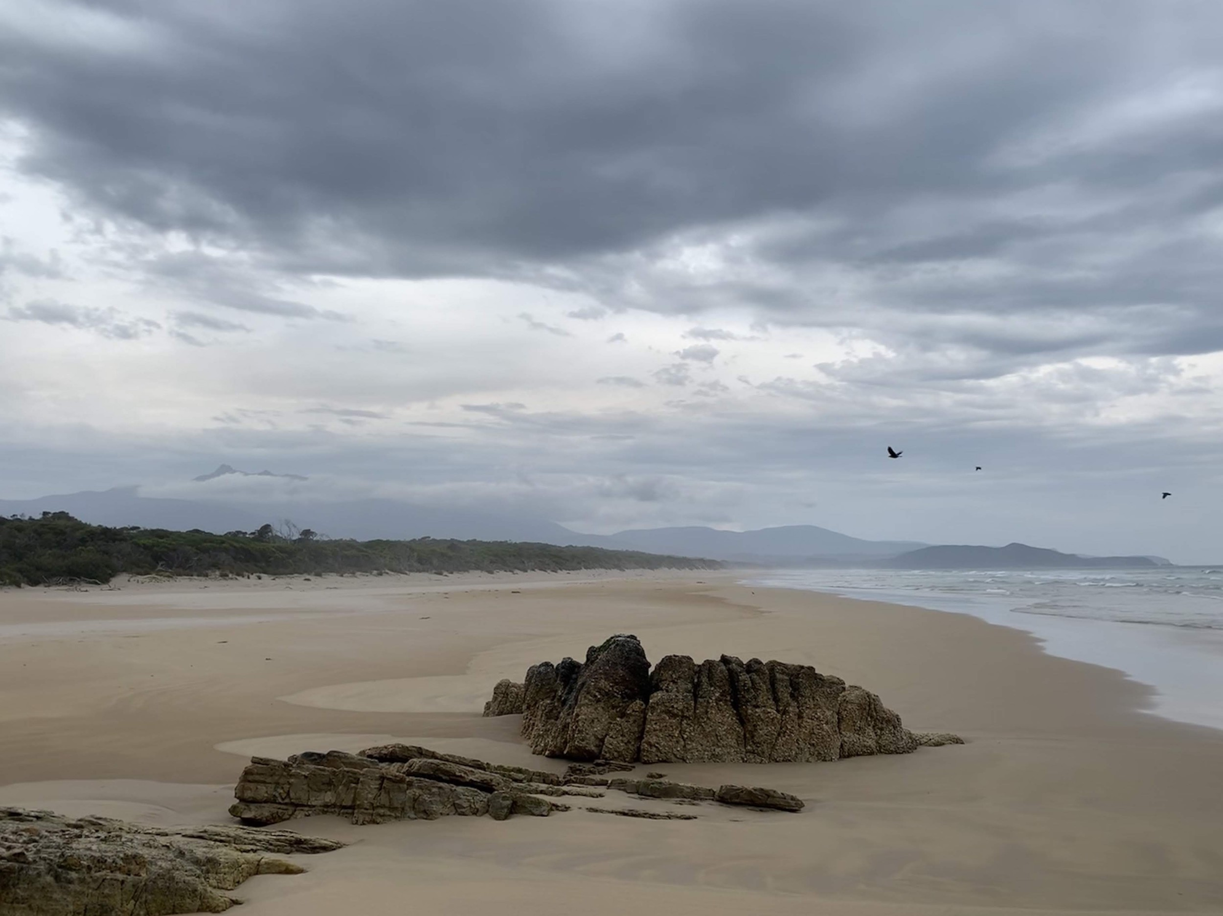 South Coast Track (Tasmania) | March 2019