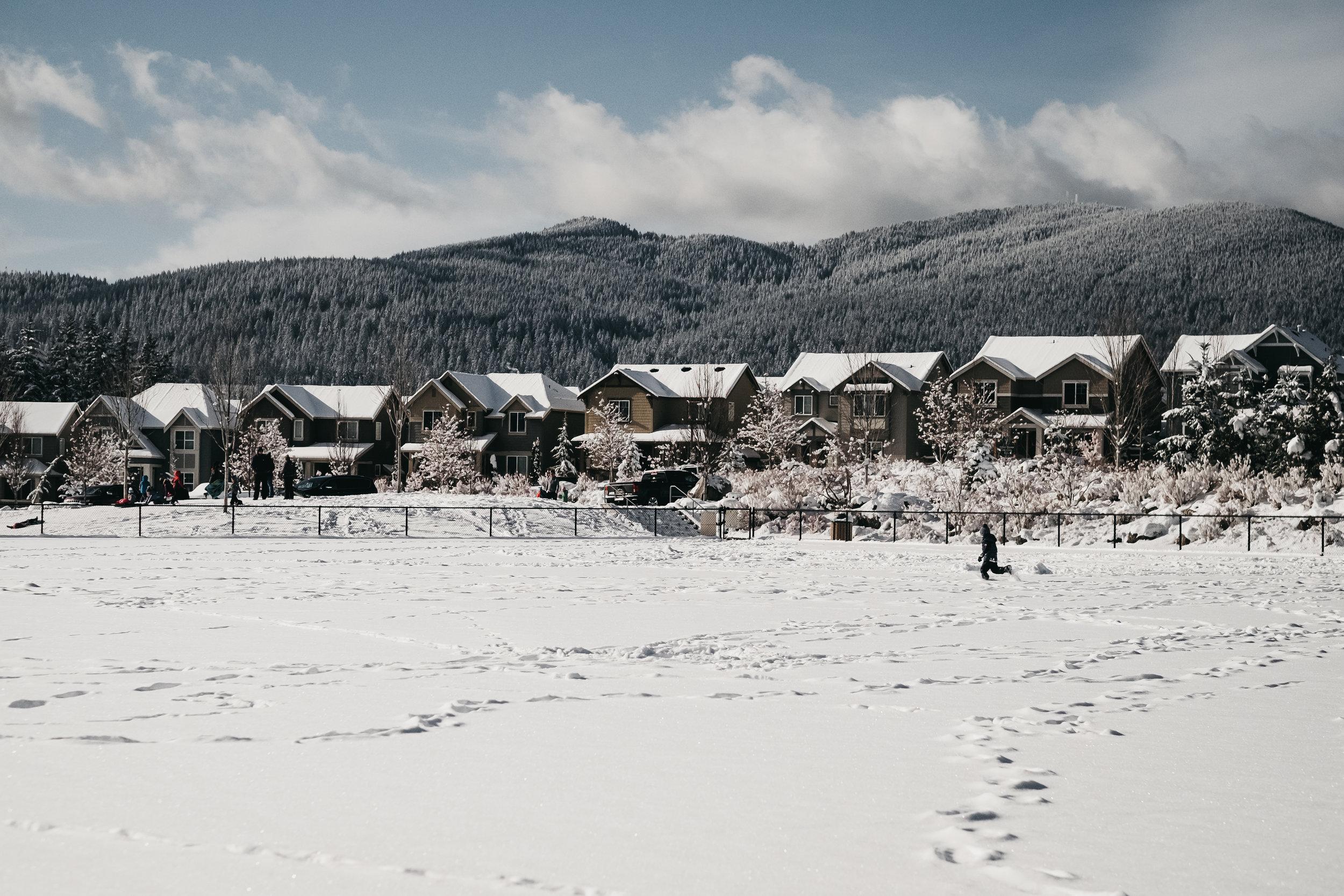 snow day 02-05-19.jpg