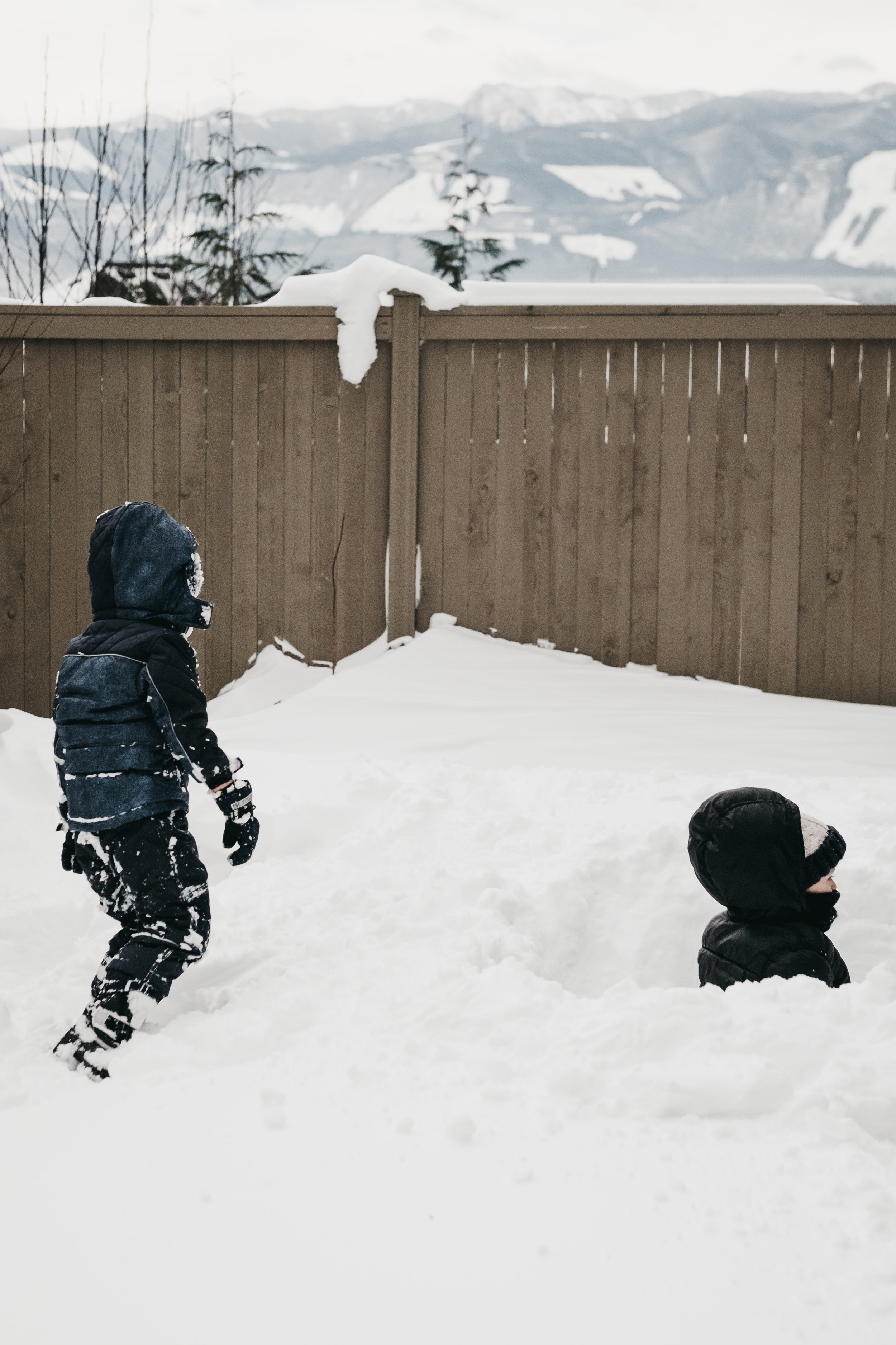Snow Day 02-09-14.jpg
