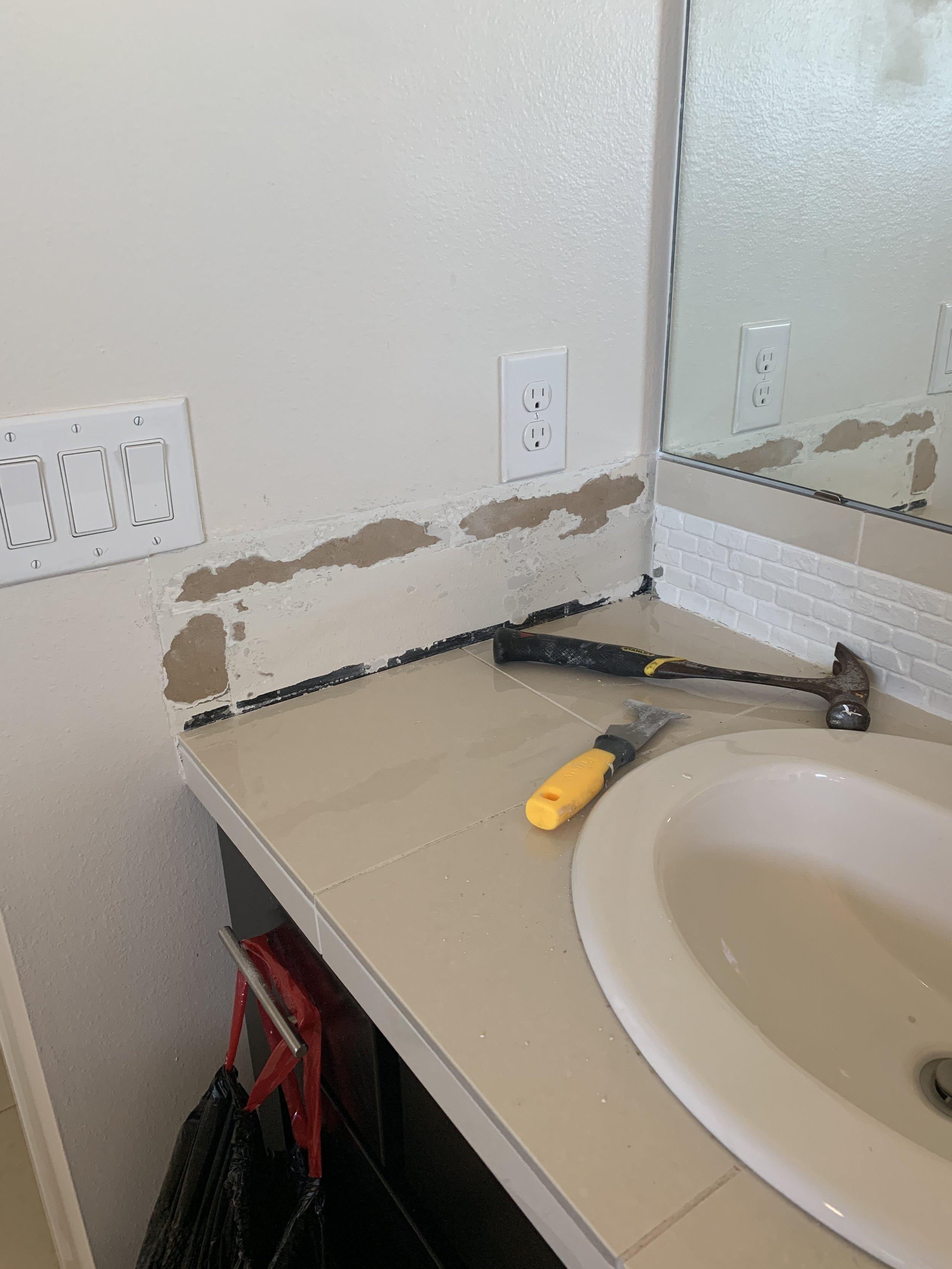Main Bathroom Upgrade Demo1.JPG