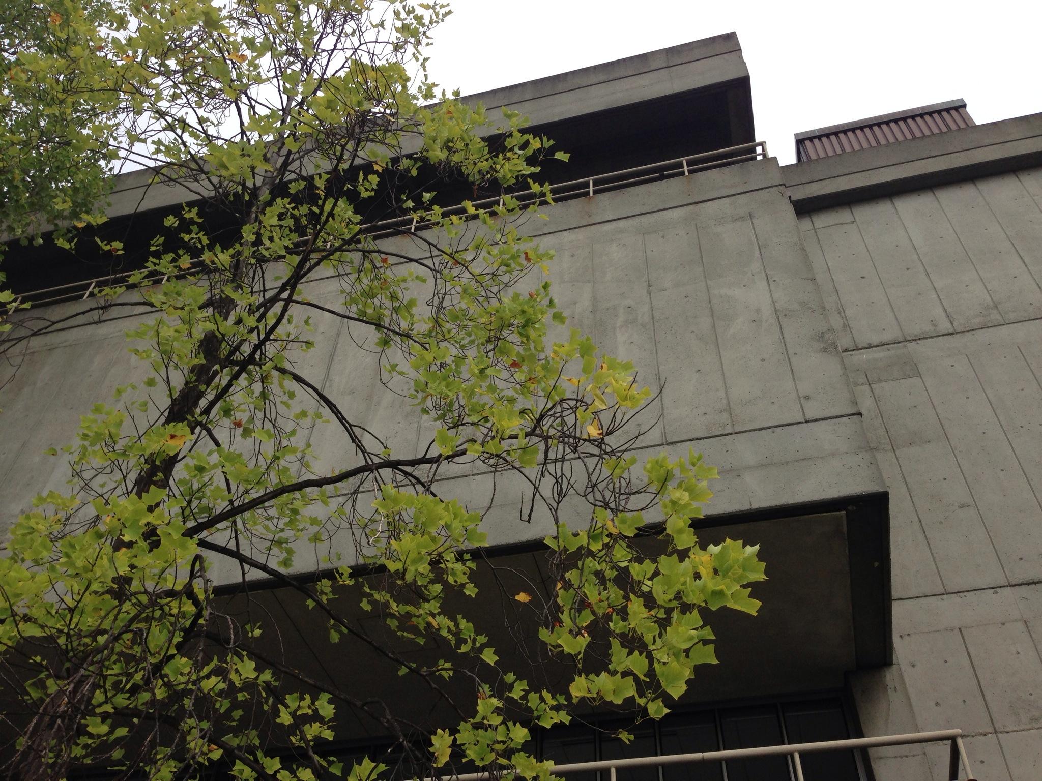 UWashington070Gould.jpg