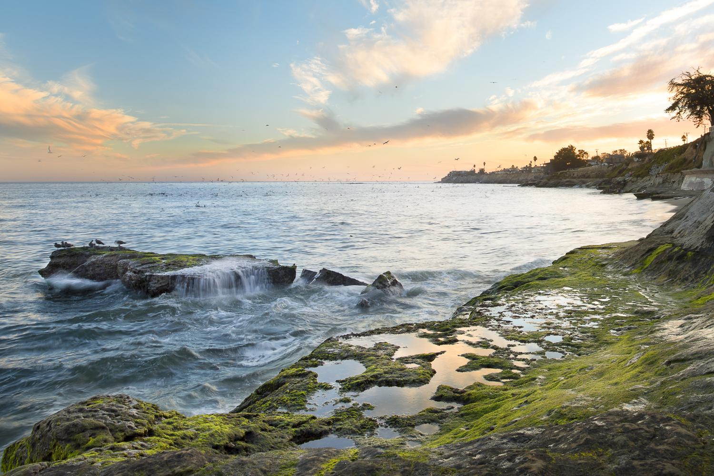 Santa Cruz Bay Area