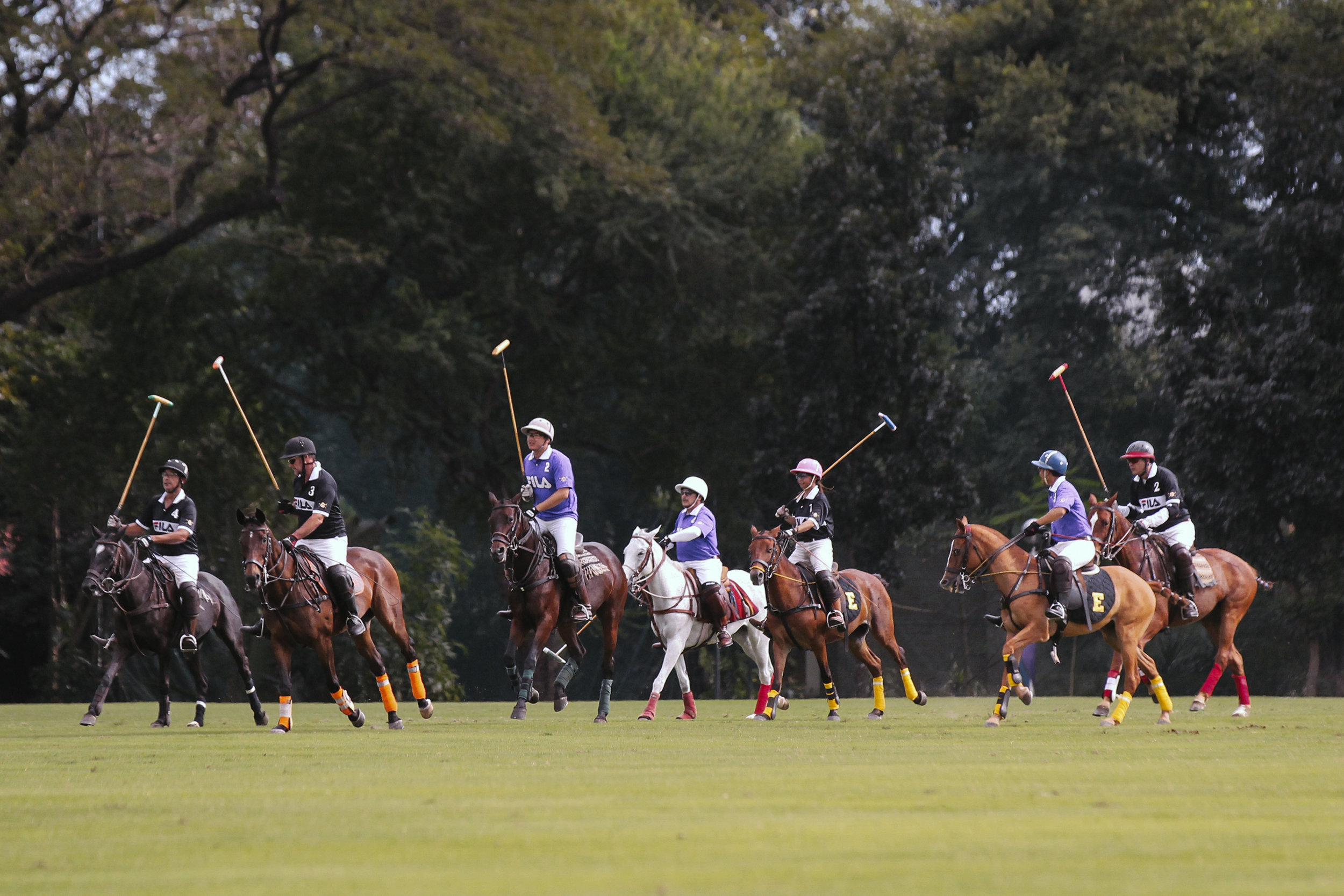 FILA Polo Cup 2017_Low Goal-15.jpg
