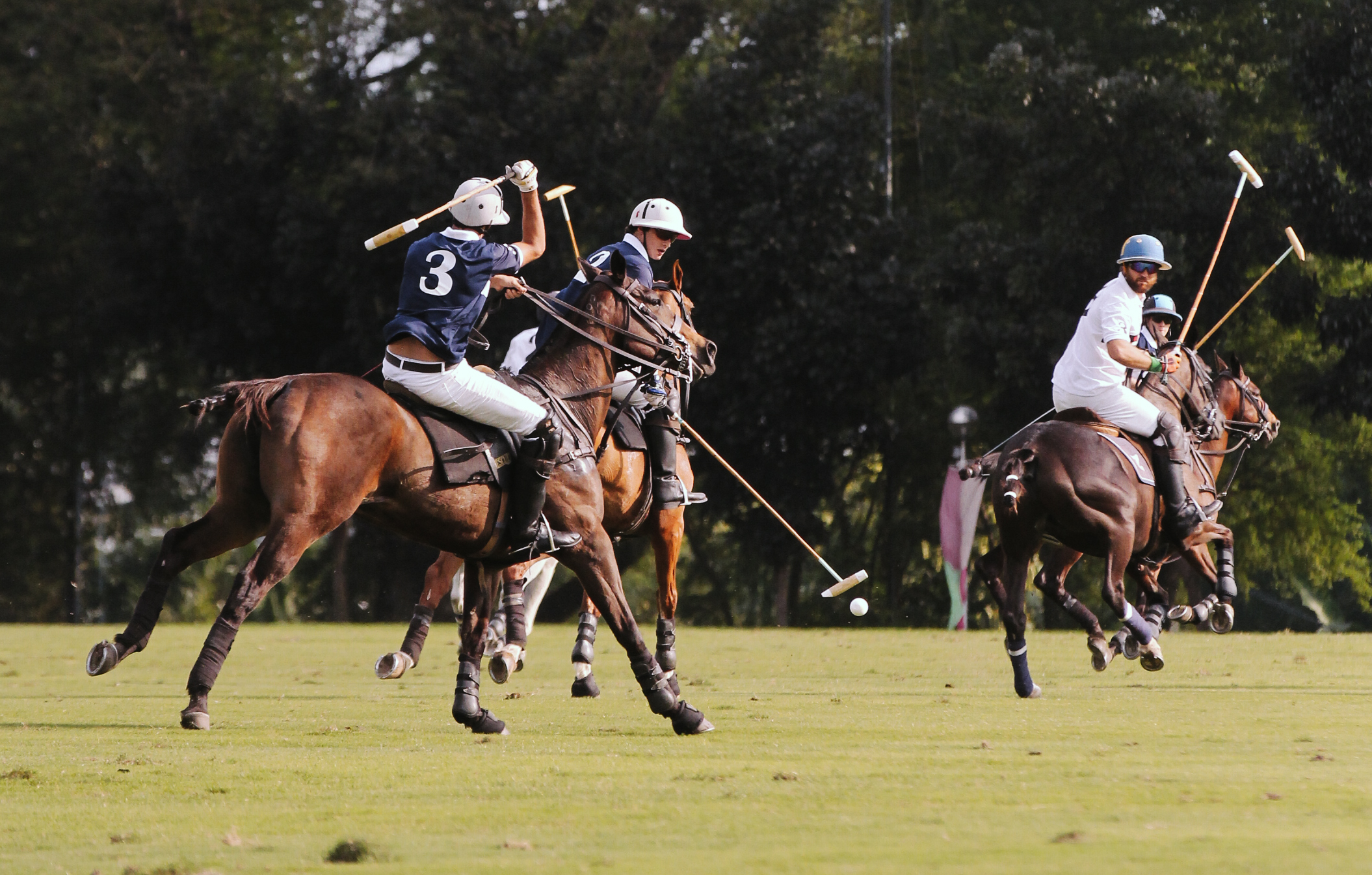 FILA Polo Cup 2017_High Goal-3.jpg