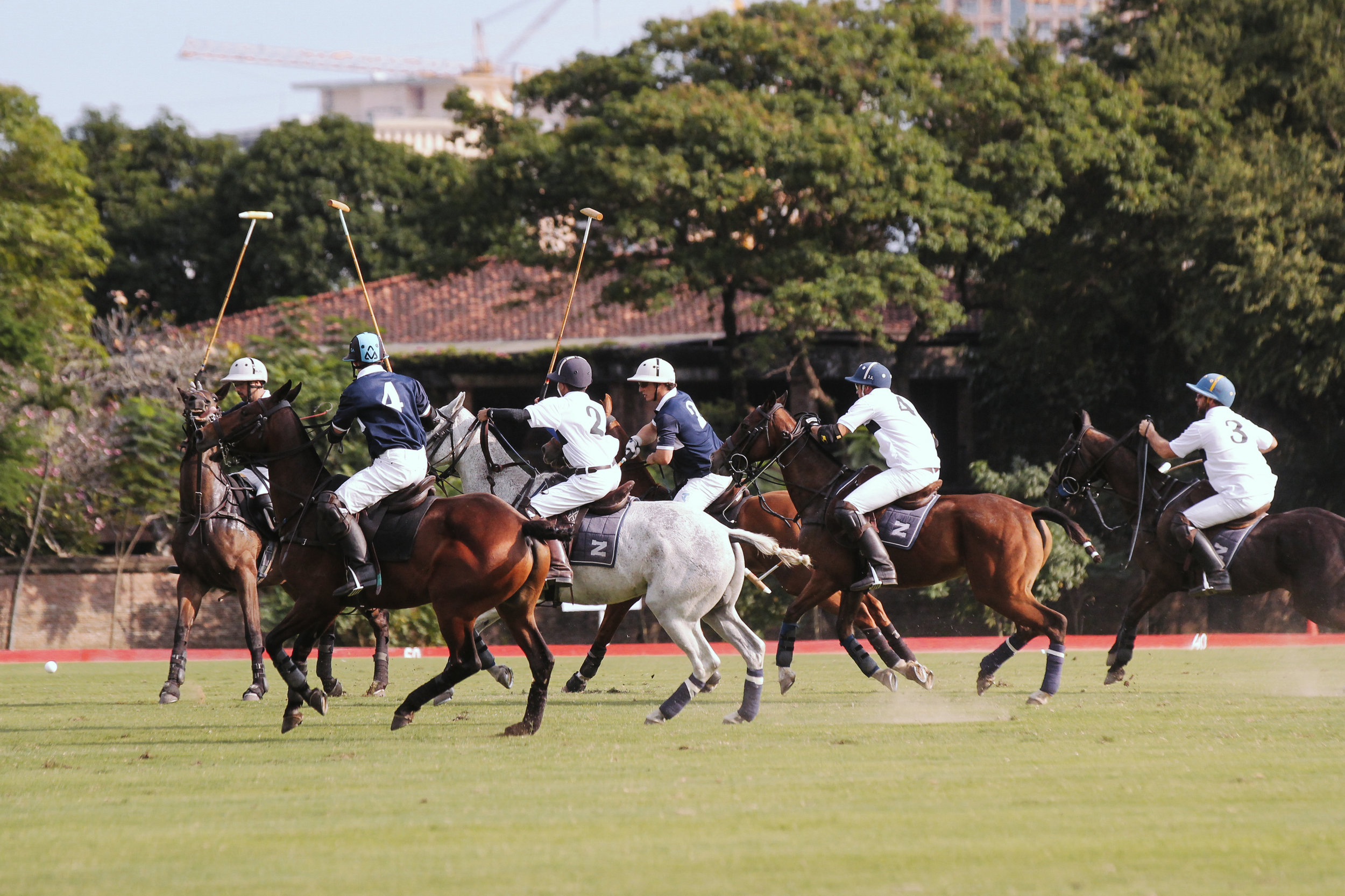 FILA Polo Cup 2017_High Goal-1.jpg