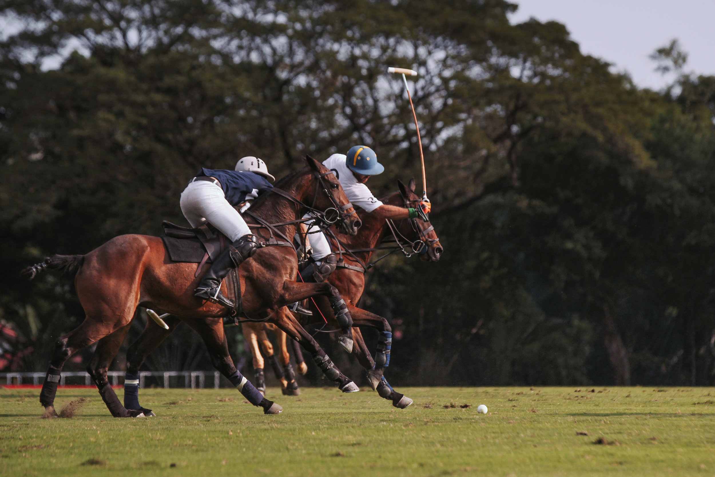FILA Polo Cup 2017_High Goal-17.jpg