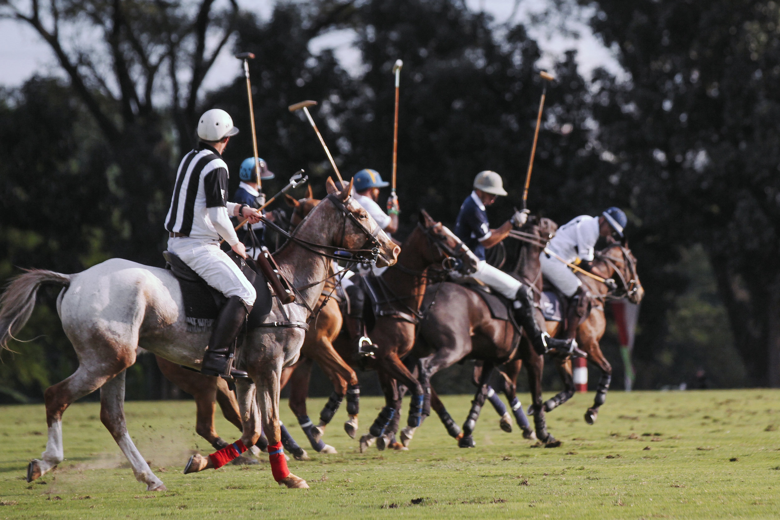 FILA Polo Cup 2017_High Goal-31.jpg