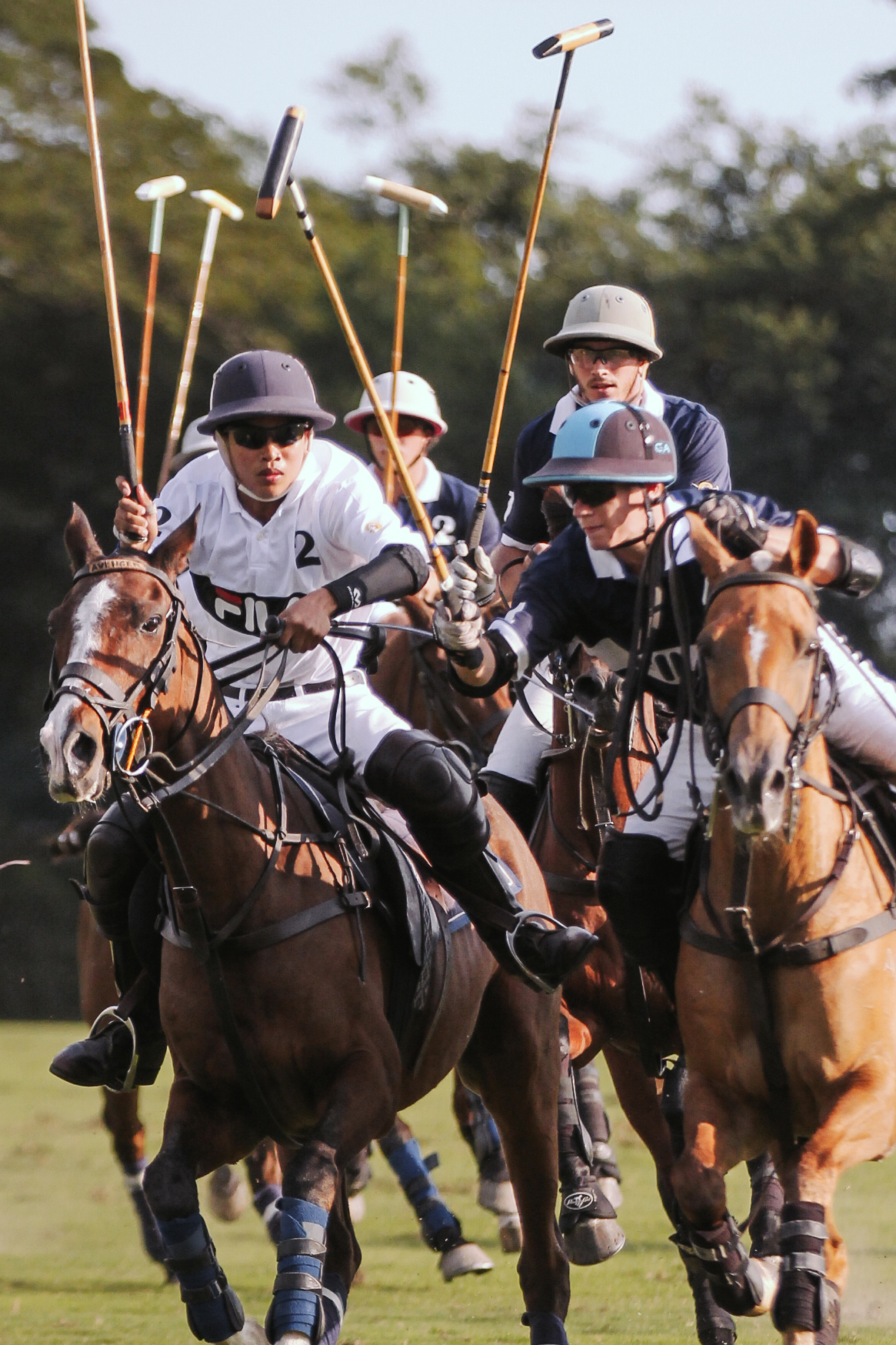FILA Polo Cup 2017_High Goal-36.jpg