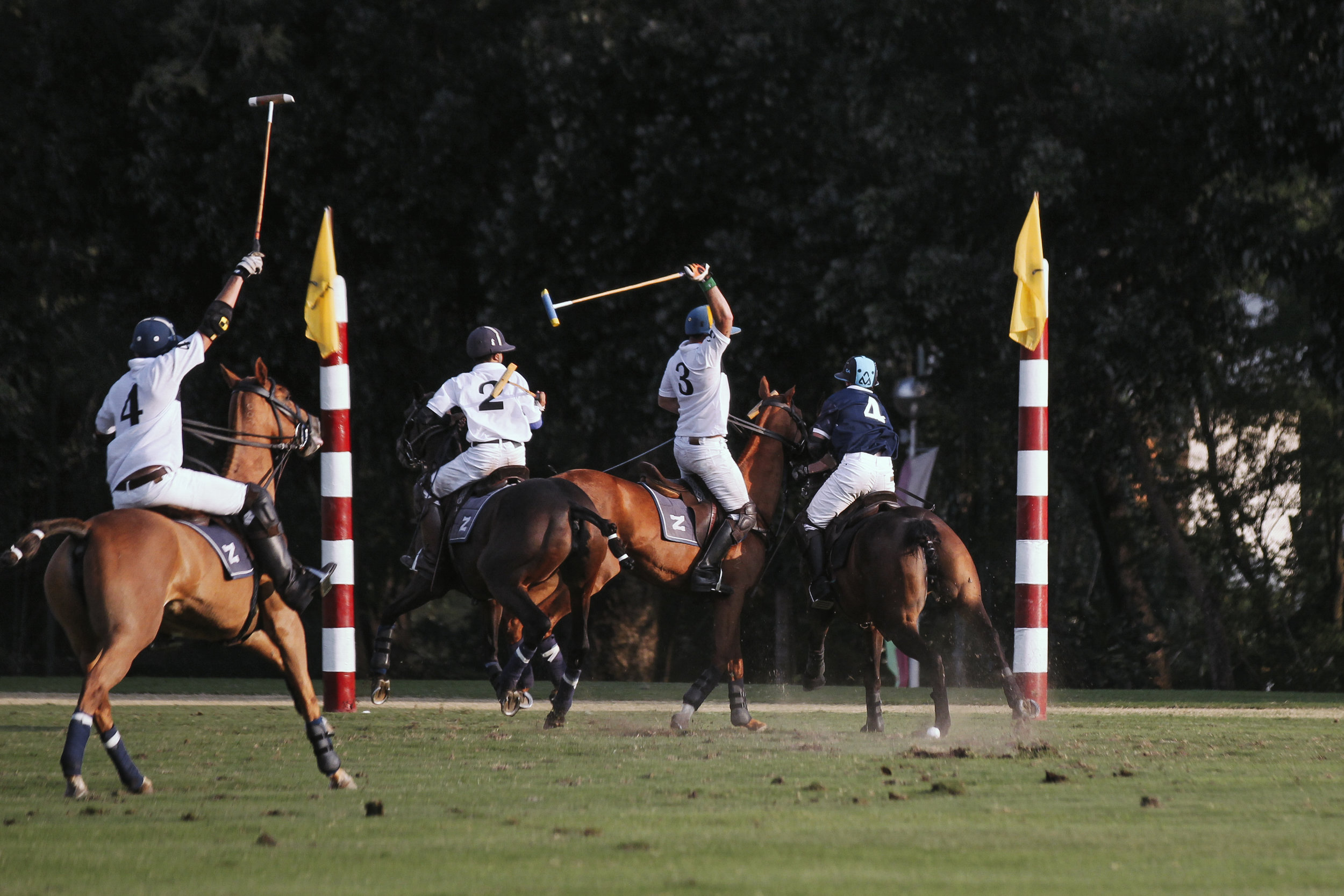 FILA Polo Cup 2017_High Goal-55.jpg