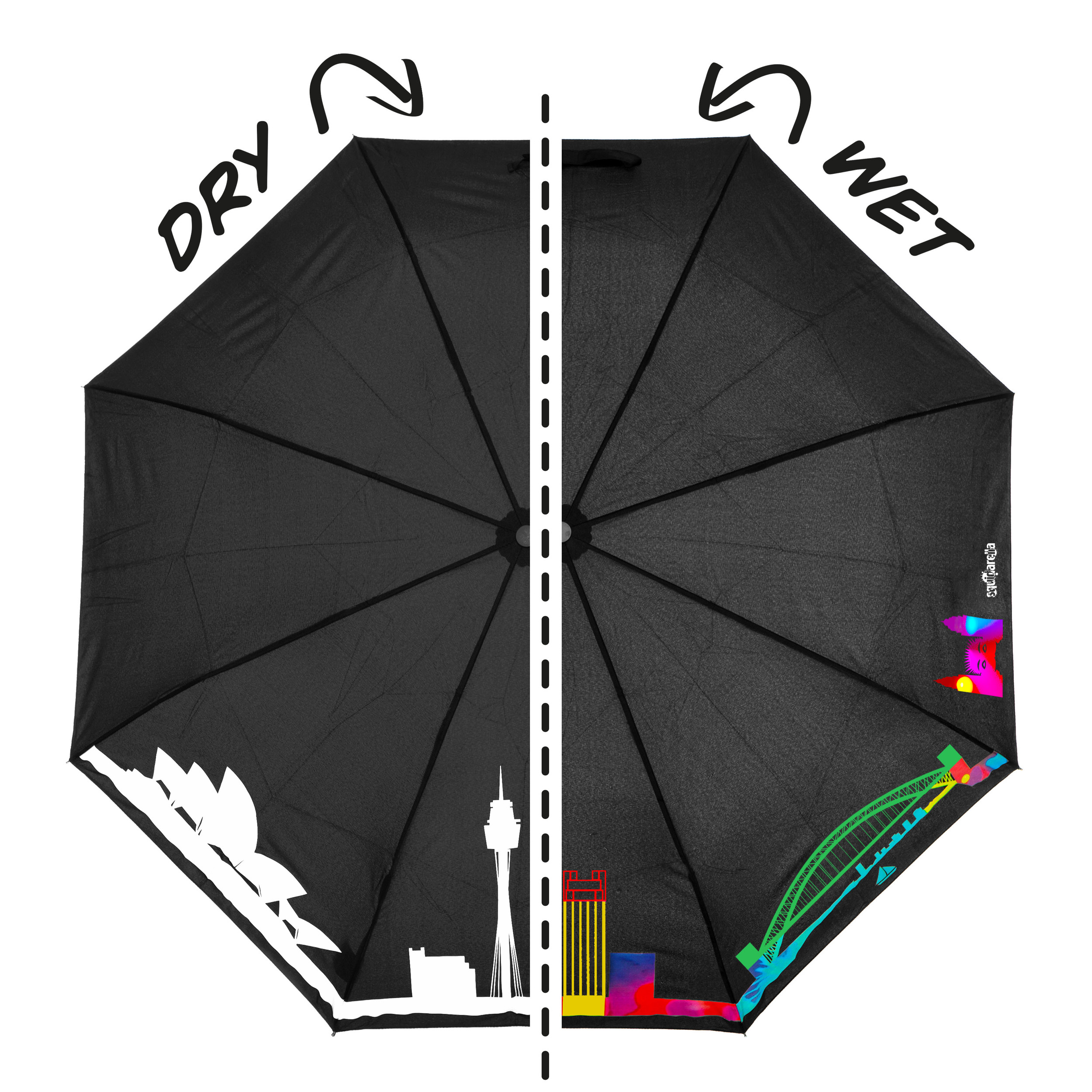 1_SYD_foldable_Squidarella_drywet.jpg
