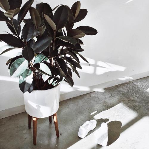 inCollective Interior Design Long Weekend Tips