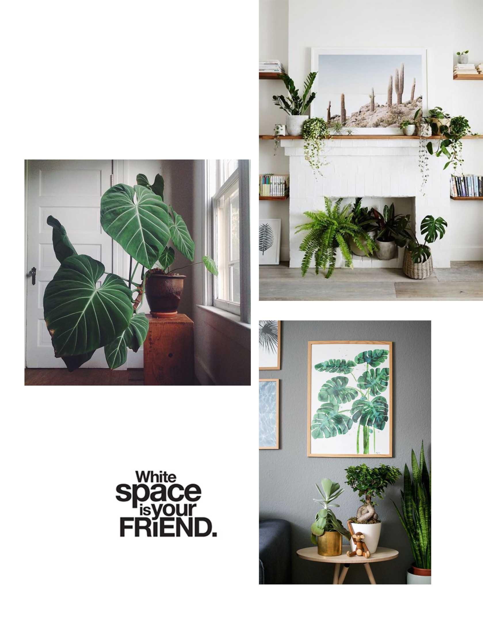 sydney best interior designer.jpg