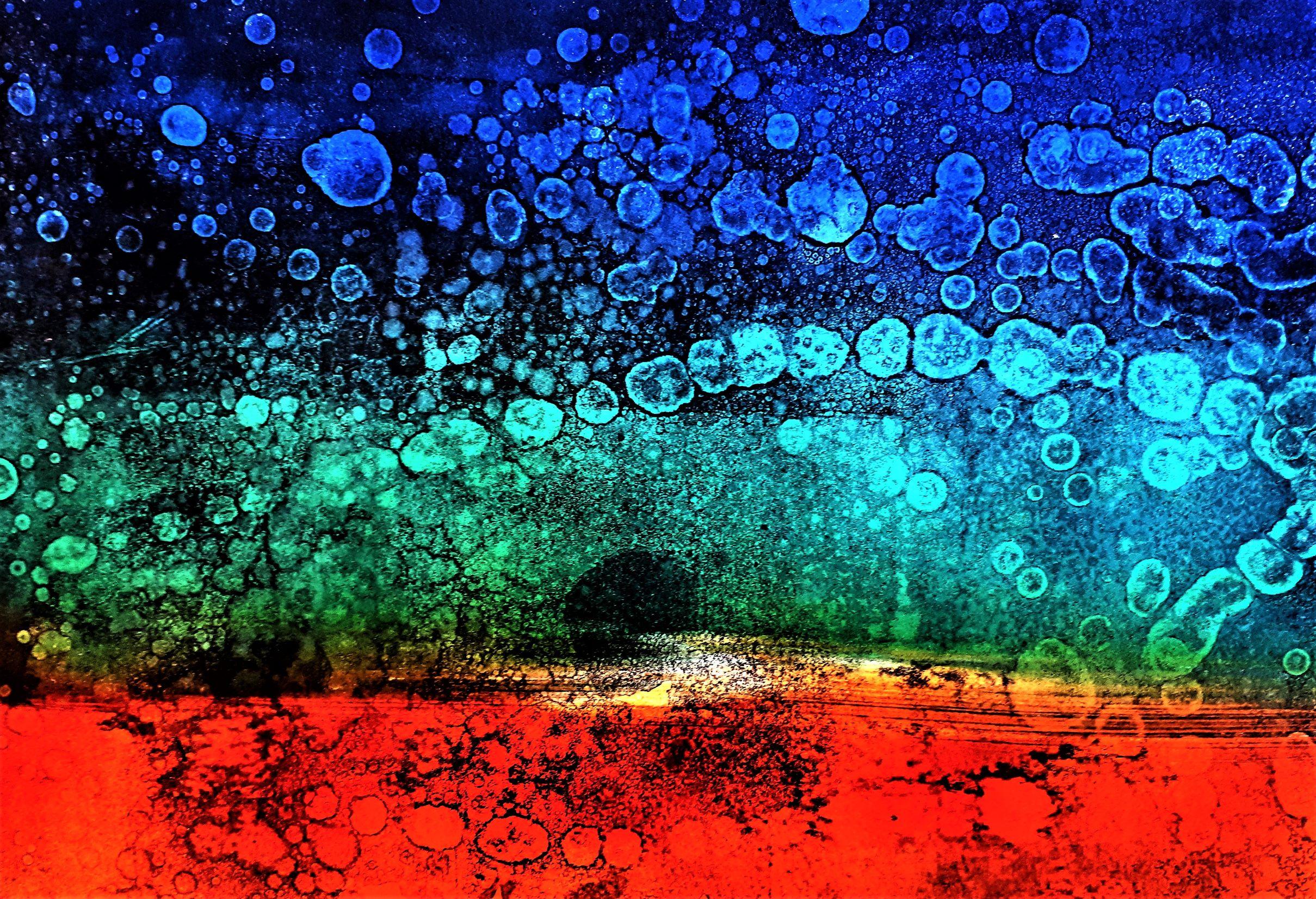 Polar Shift   Lisajane Braun.jpg