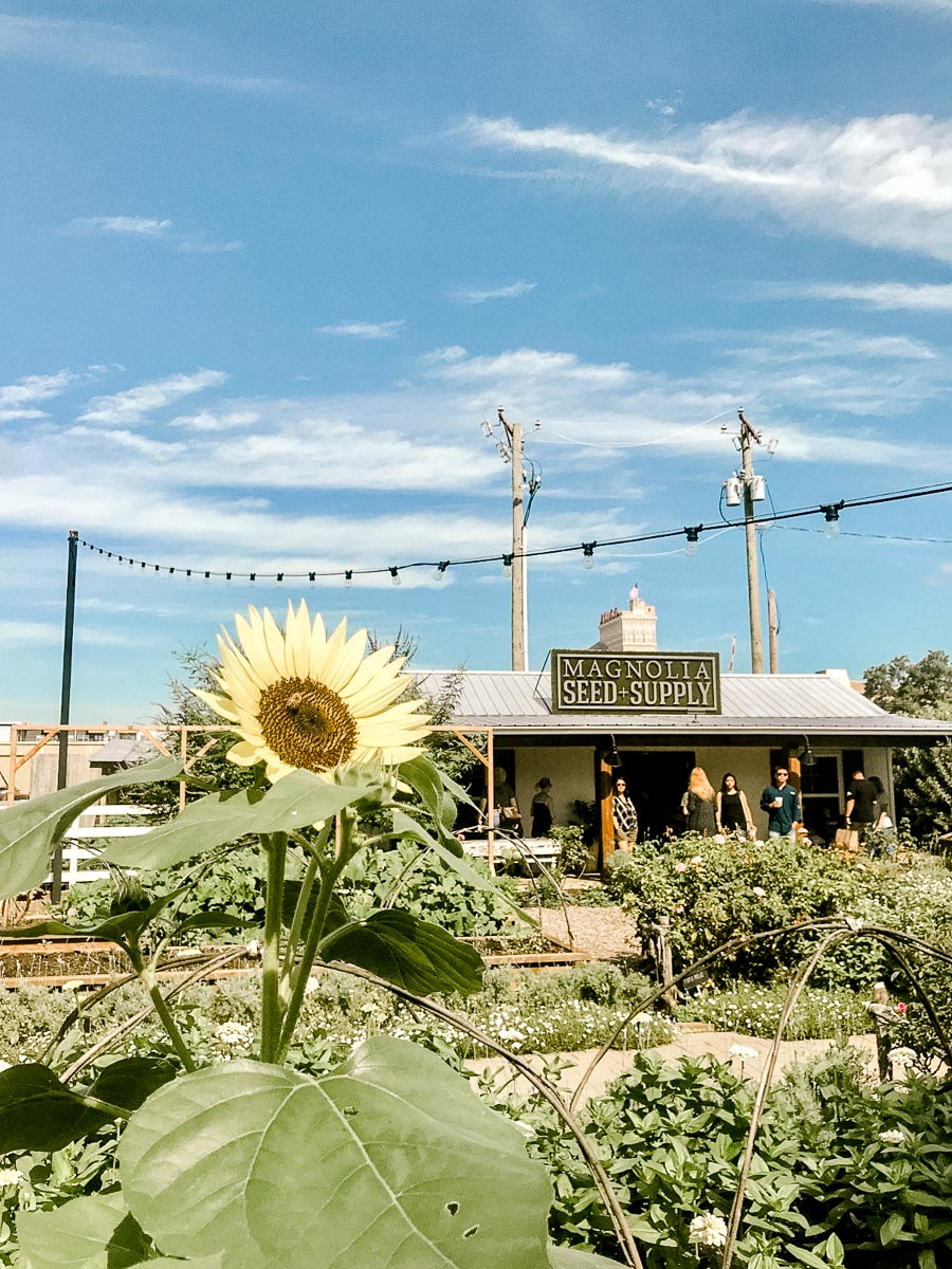 magnolia-market-what-to-expect-6.jpg