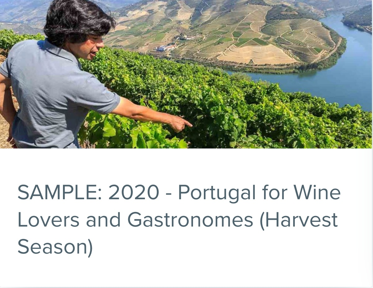 Portugal for Wine Lovers and Gastronomes