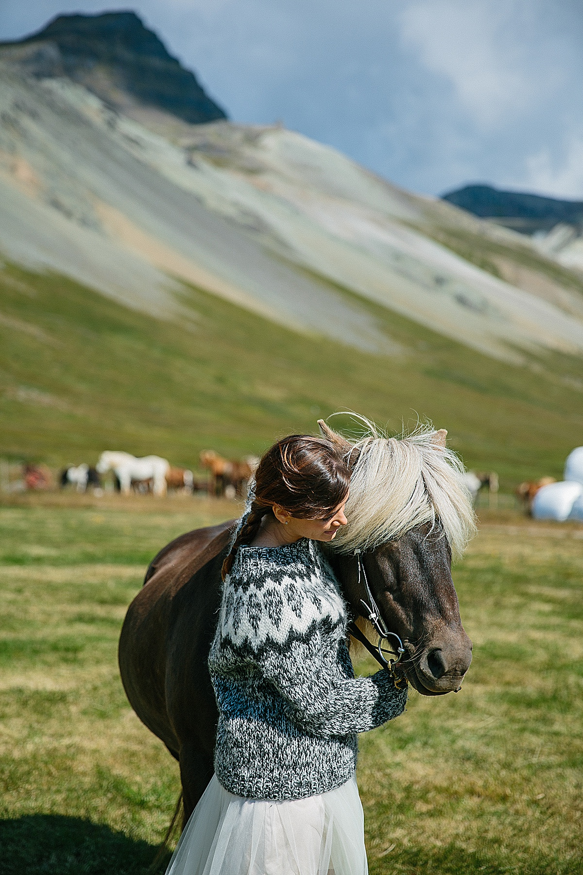 Icelandic Horses!! - We have connections to many wonderful Icelandic Horse Farms for a wedding photo shoot. I highly recommend that we schedule a stop at one of these lovely family run farms for a frolic with the horsies!
