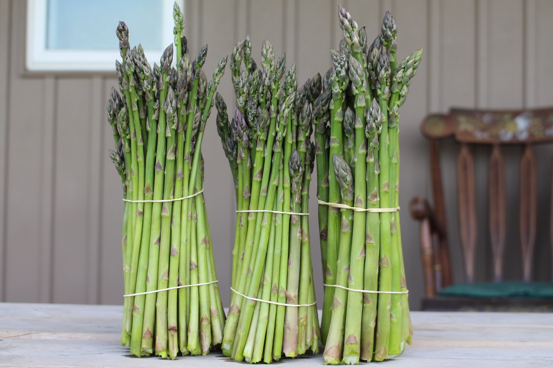 Asparagus   Our fresh picked asparagus is the perfect side dish for your summertime BBQ. With such a versatile vegetable, you are sure to please your guests.