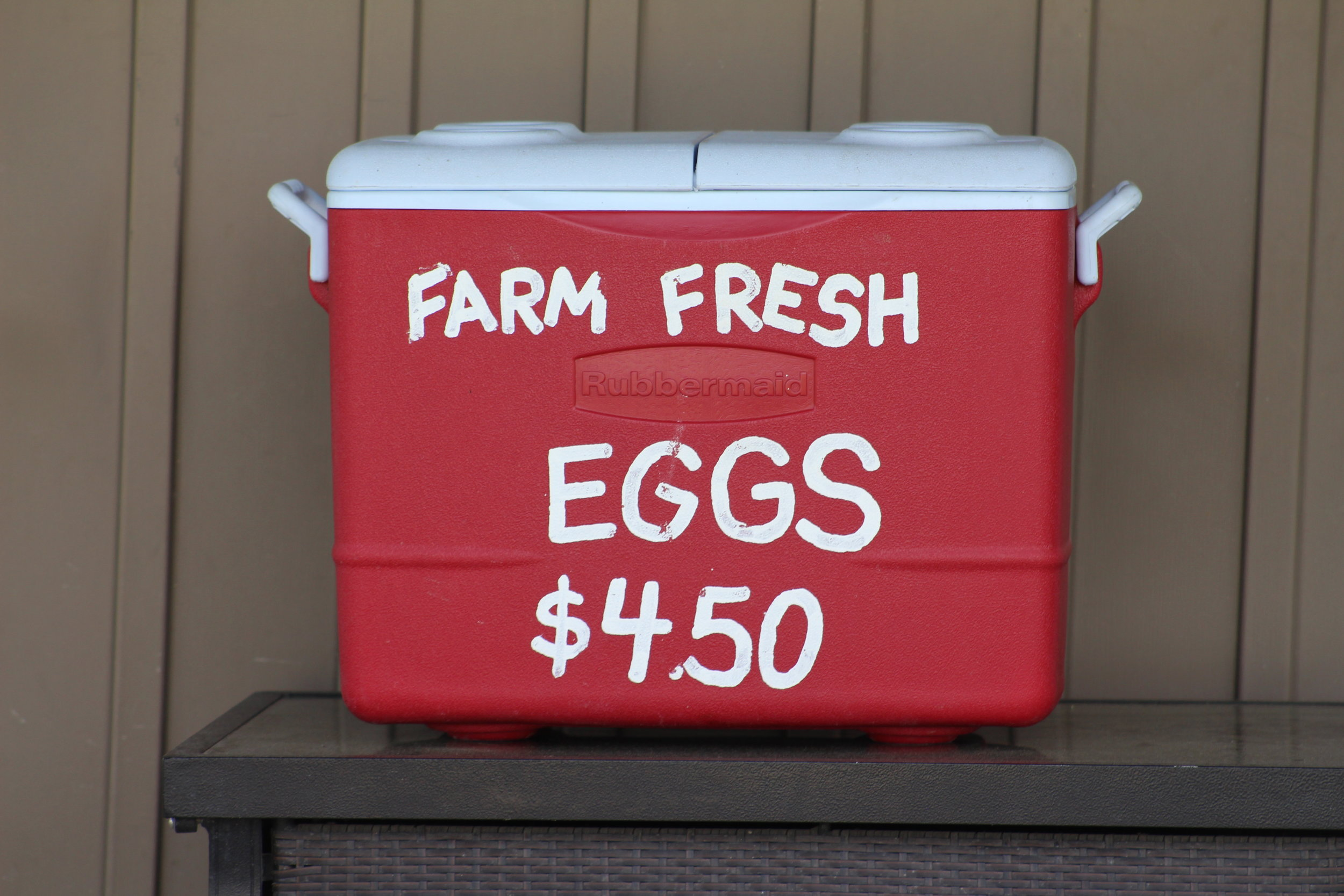 """""""Big Red"""" - """"Big Red"""" is located just in our driveway and is where you can pickup self-serve fresh eggs and seasonal vegetables.Hours: Daily 9am-6pm"""