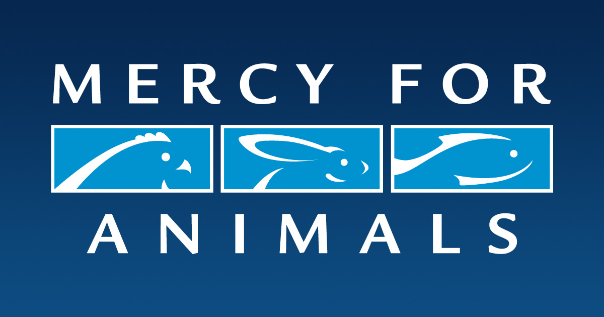 We are on the frontlines fighting to protect farmed animals. From factory farms to corporate boardrooms, courts of justice to courts of public opinion, Mercy For Animals is there to speak up against cruelty and for compassion.