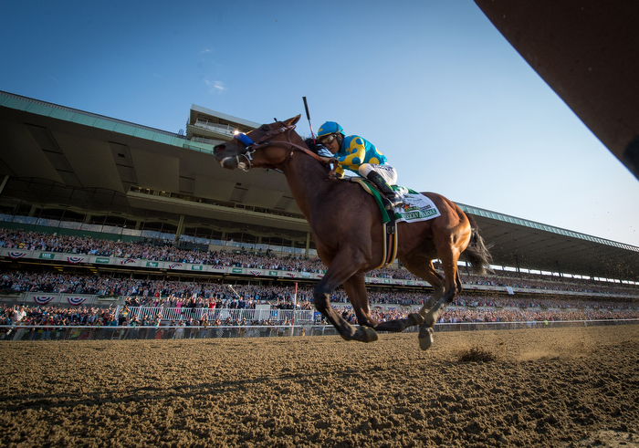 American Pharoah with Victor Espinoza up and trained by Bob Baffert wins the 147th running of the Belmont Stakes, Grade I - $1,500,000, and is now Triple Crown winner, Belmont Park, Saturday June 6, 2015.