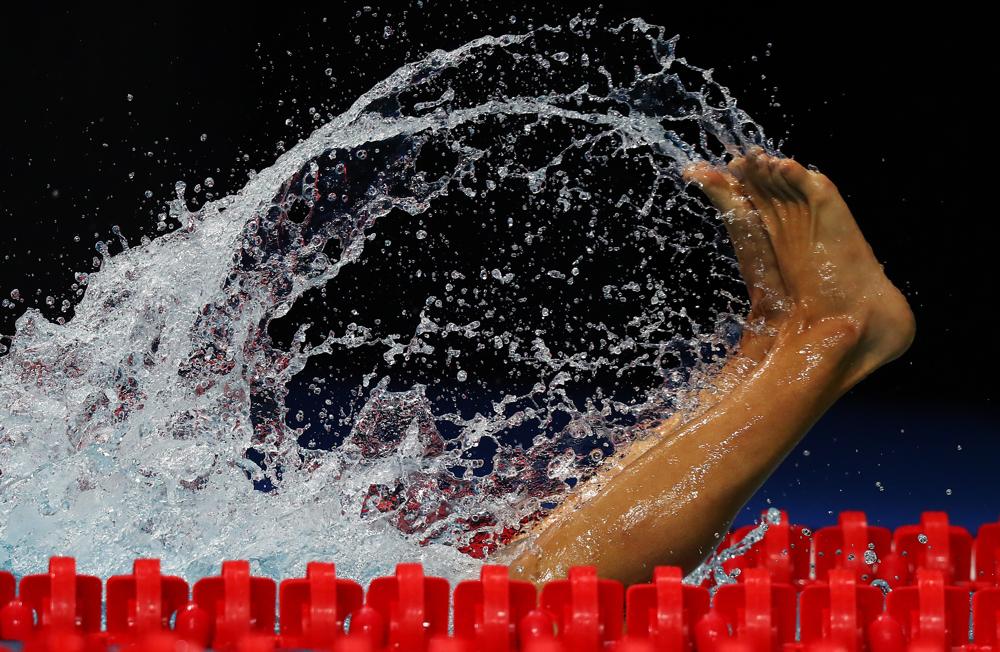 2017 FINA World Championships