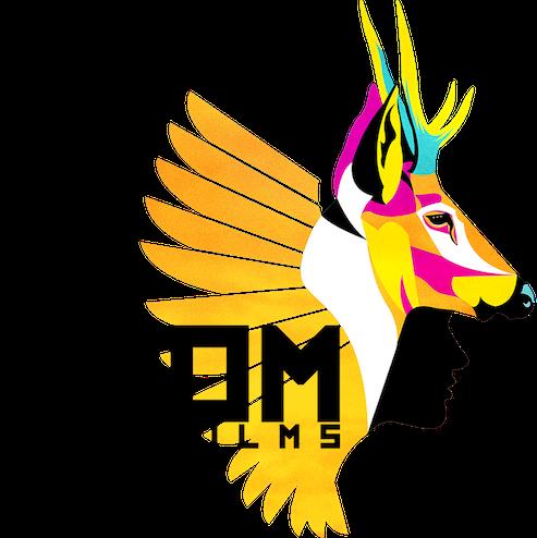 TZOM FIlms