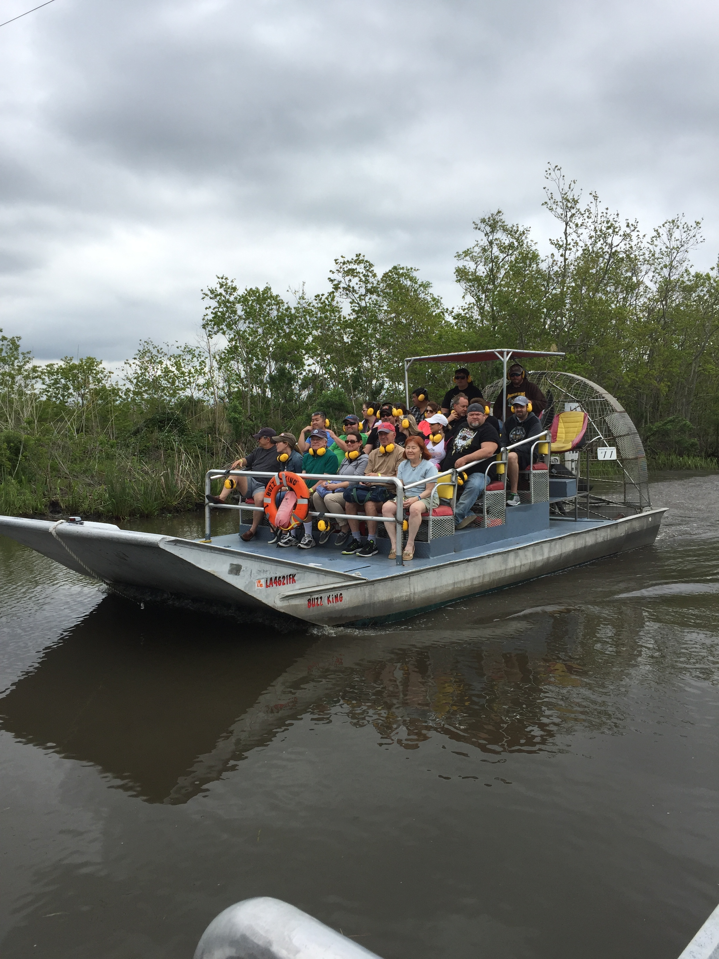 Airboat Swamp Tour Near New Orleans