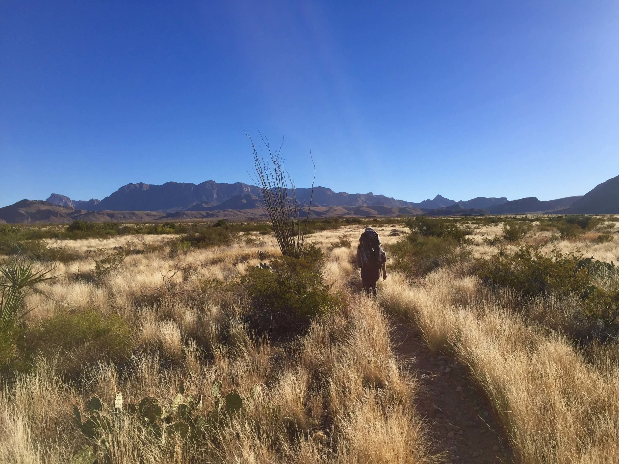Backpacking in the desert of Big Bend.