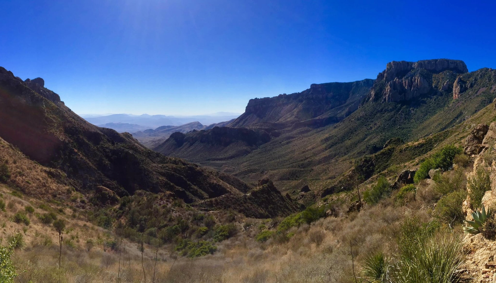 Canyon view from the Lost Mine Trial of Big Bend National Park.