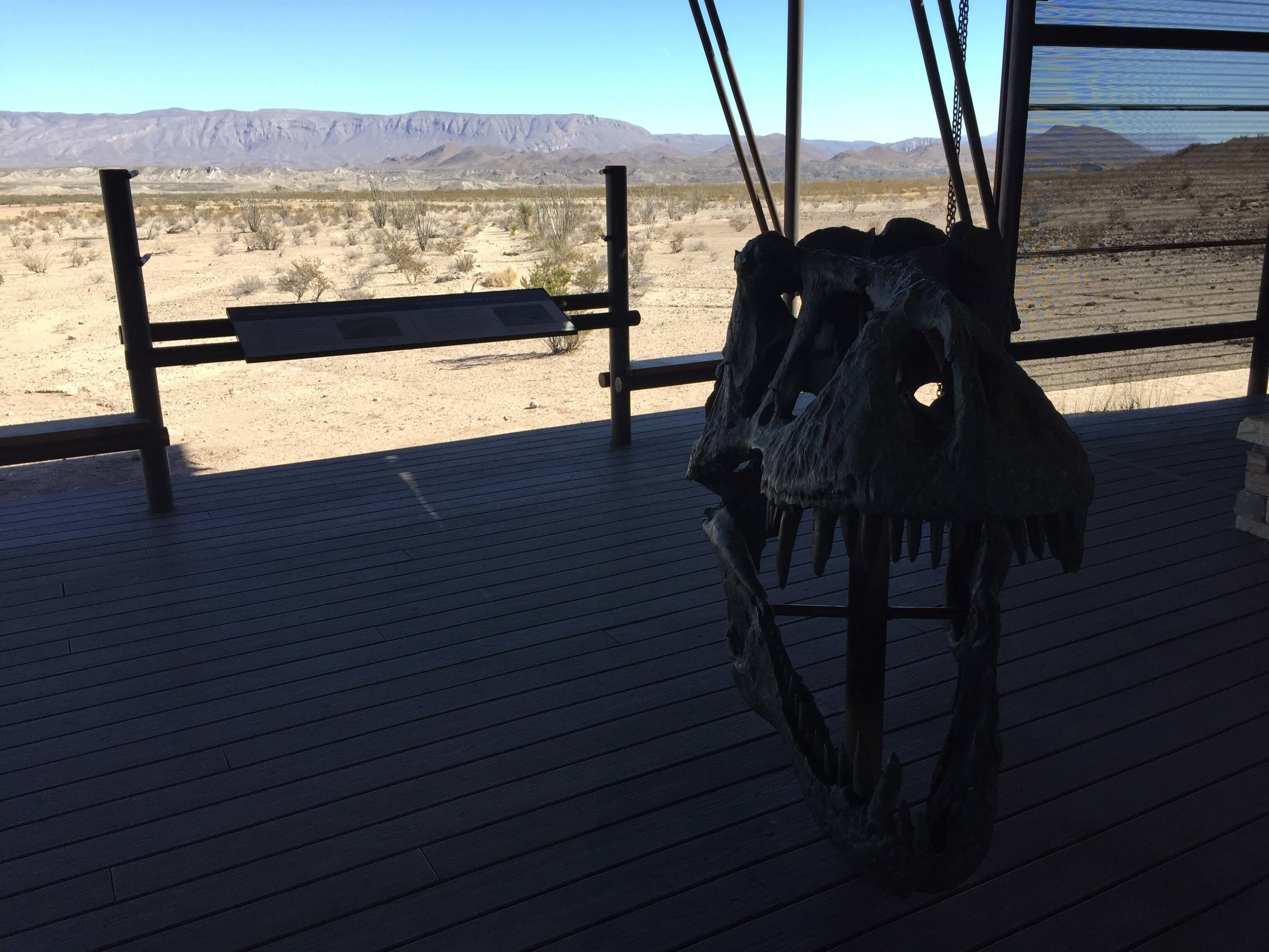 A dinosaur exhibit portraying the prehistoric history of Big Bend National Park