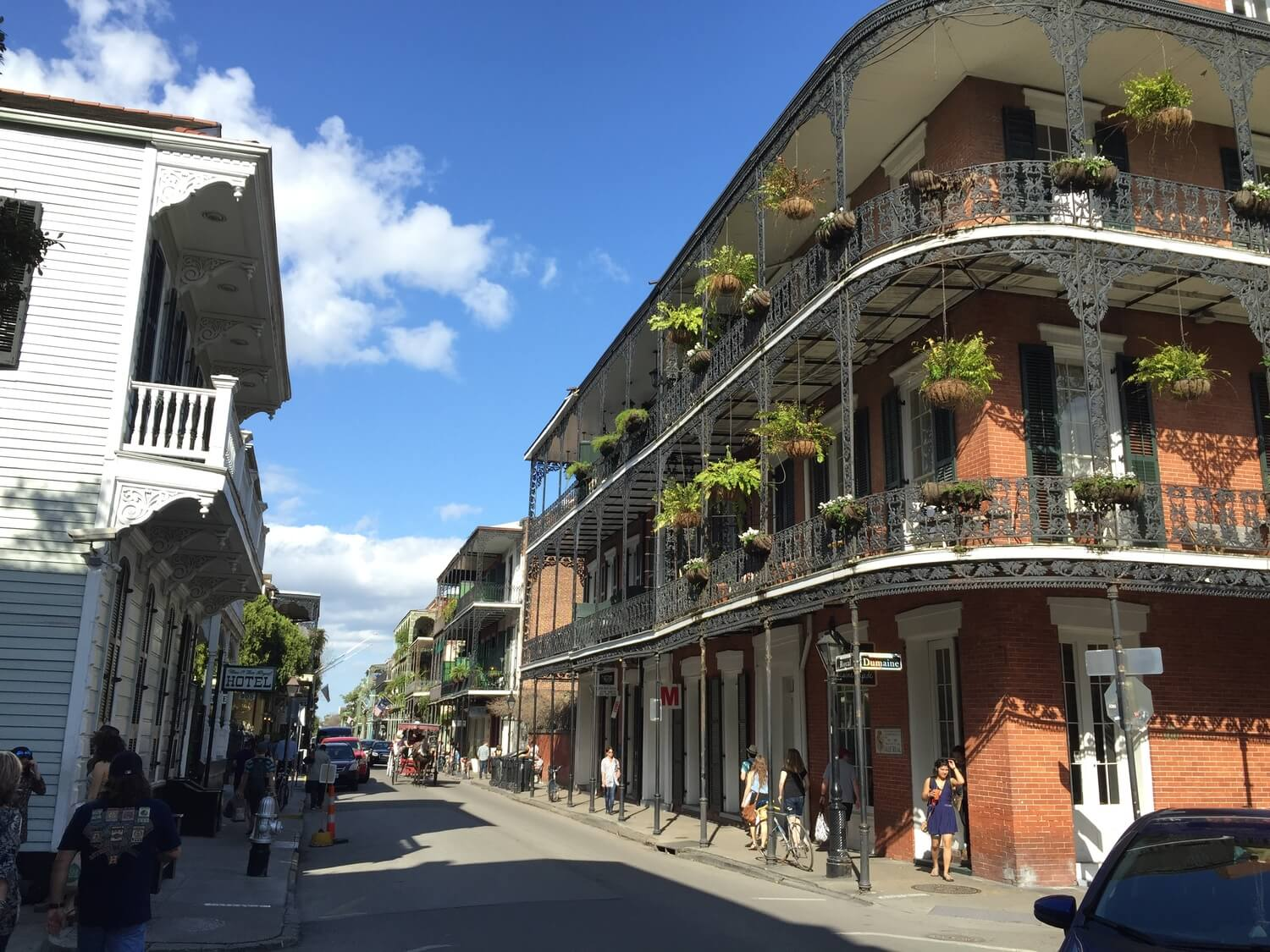 Classic New Orleans balconies and galleries featuring hanging plants. #7 in Best Things to Do in the French Quarter.