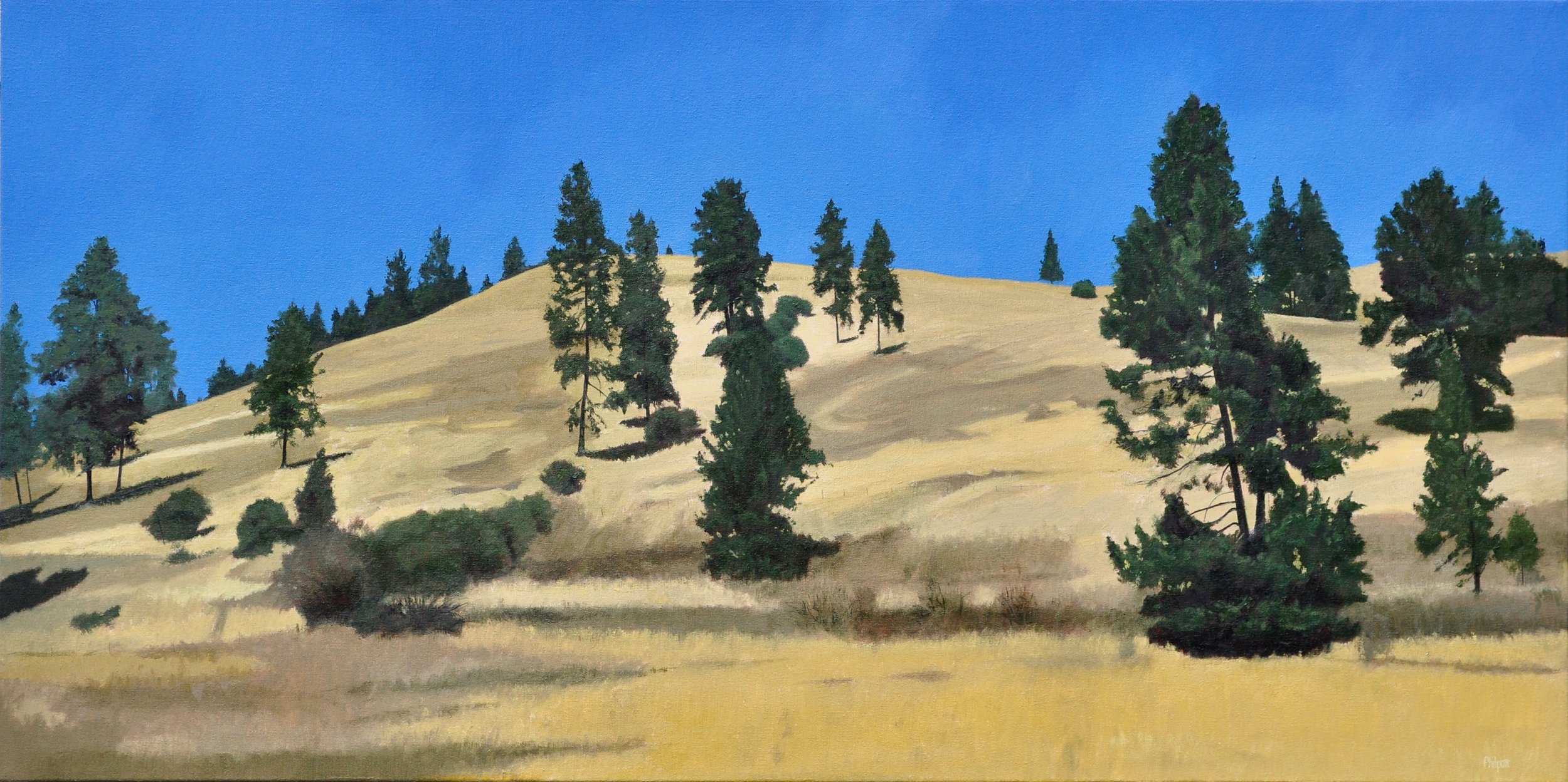SOLID GOLD   20″ X 40″ / Oil
