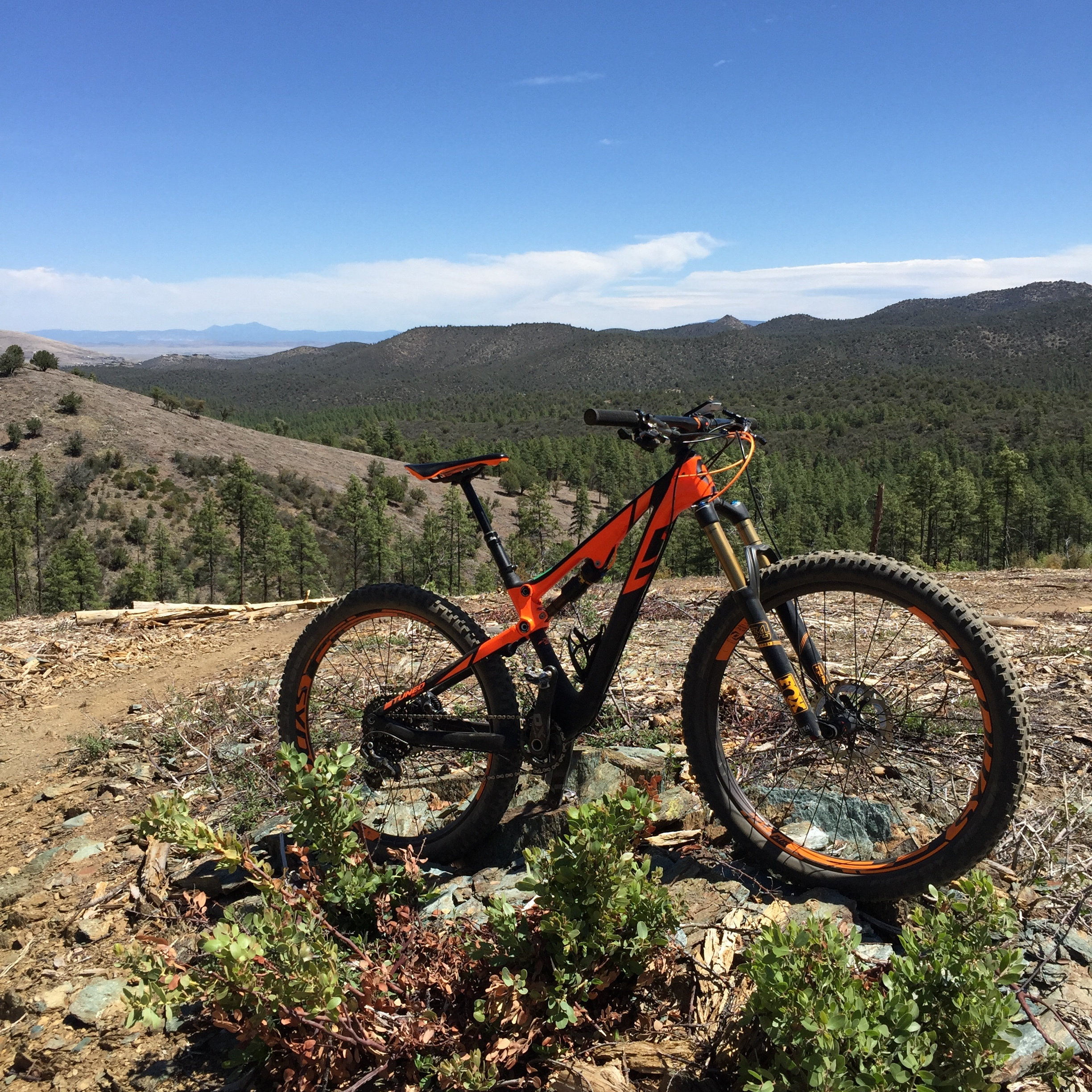 The plus size tires did not get old, providing tons of traction up any climb.