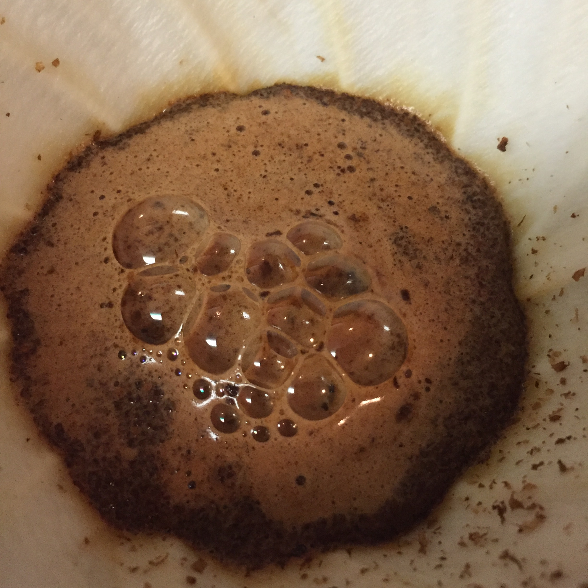 Standard pourover bloom, before stirring