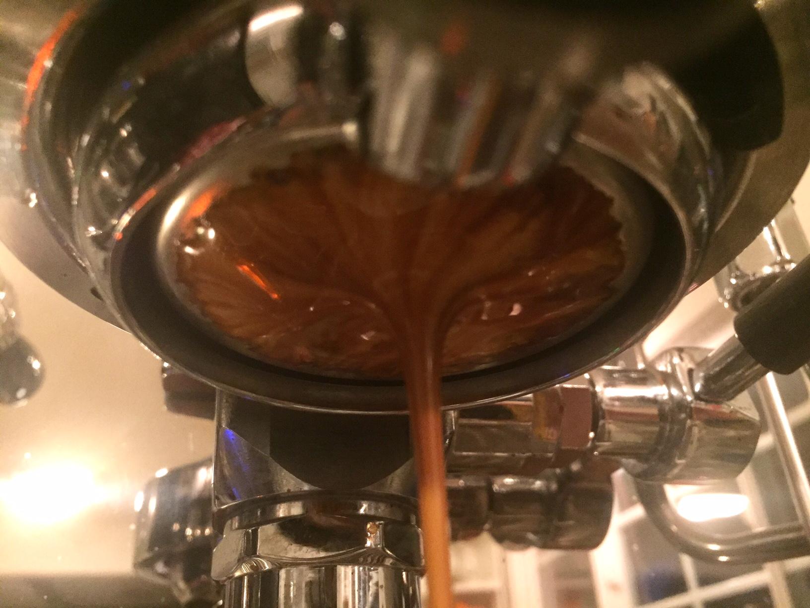 Ceremony Coffee Roasters Espresso Shot