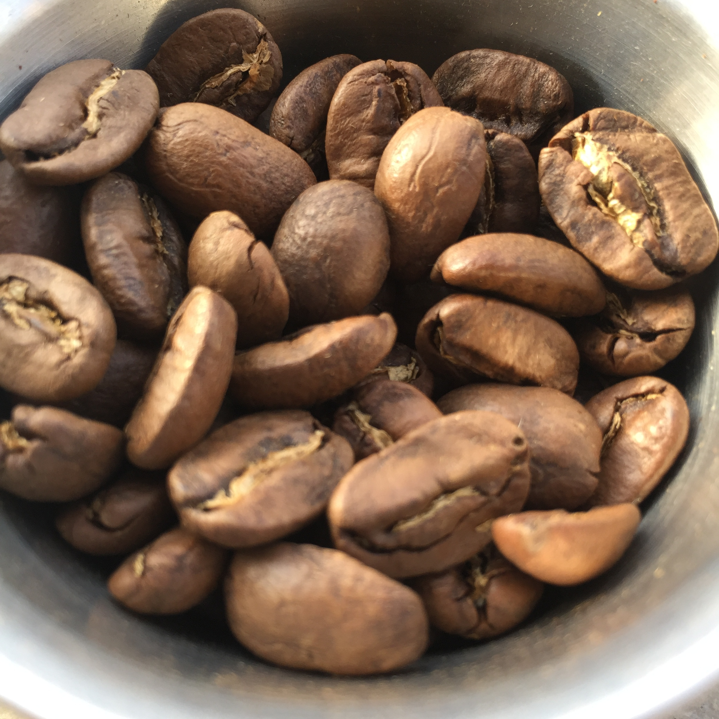 Beans are large, dense, and hard
