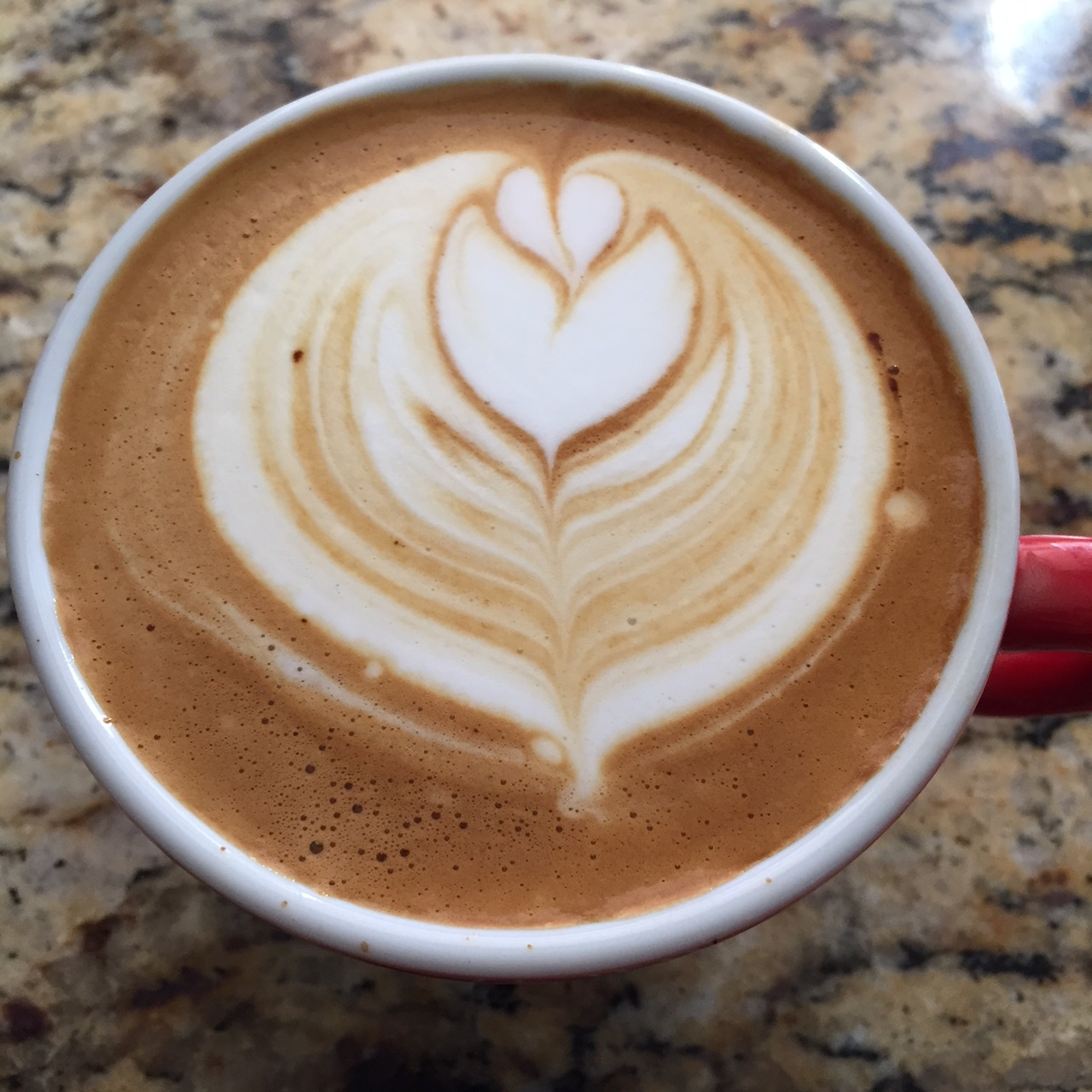 Sweet Bloom Colombia Cappuccino.JPG