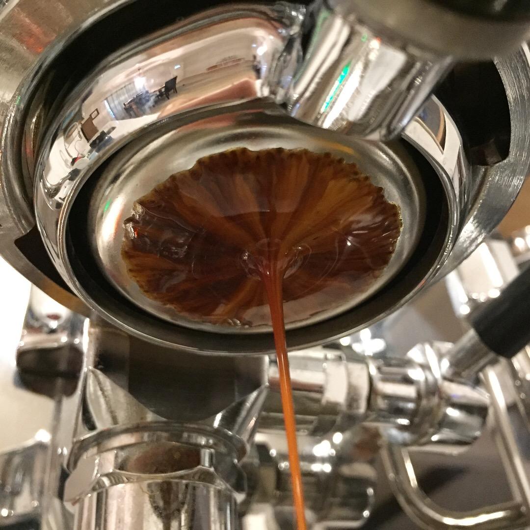 Intelligentsia Abagore Burundi Espresso.JPG