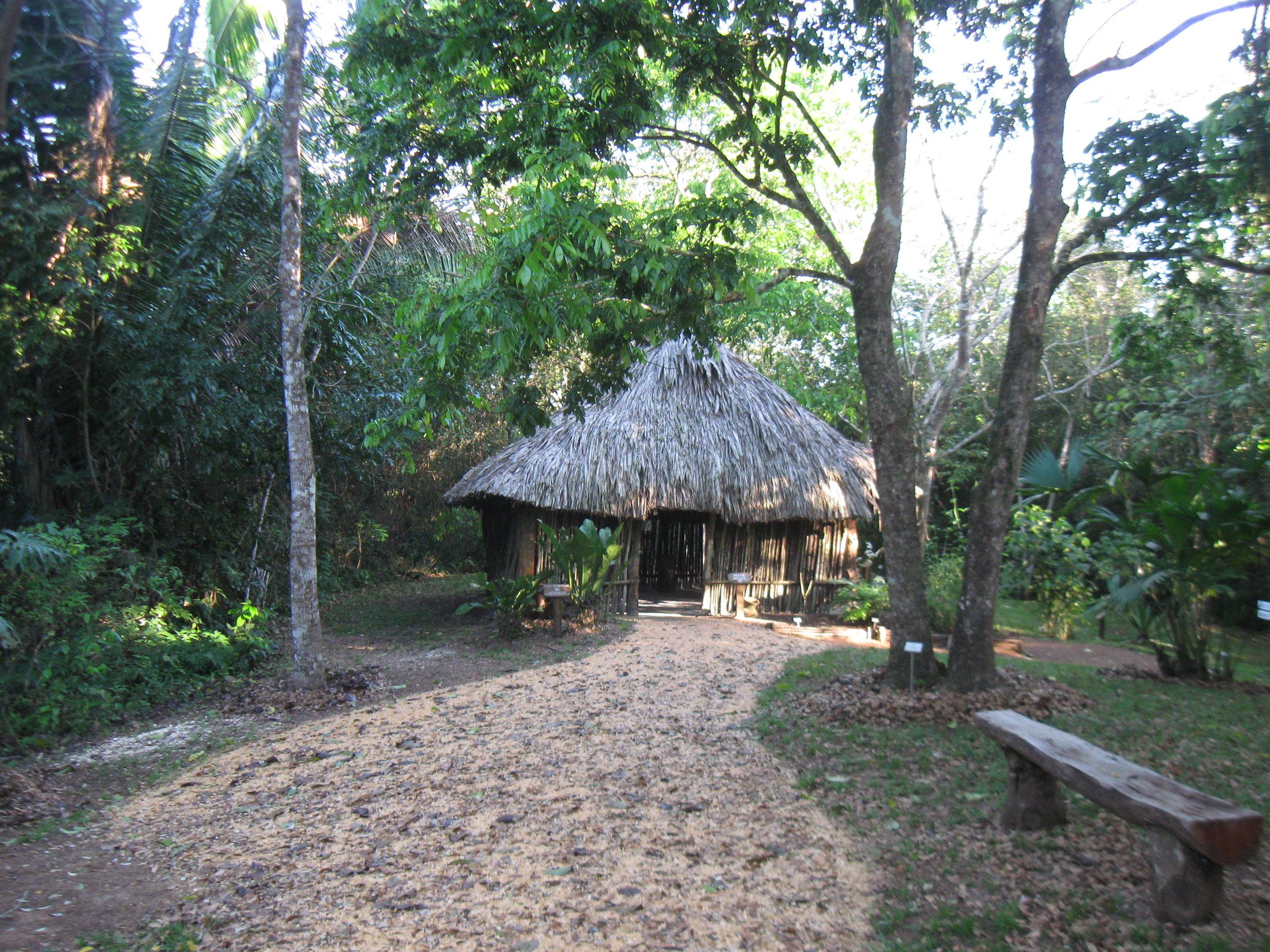 Jardin Botanico de Belice- Maya House.JPG