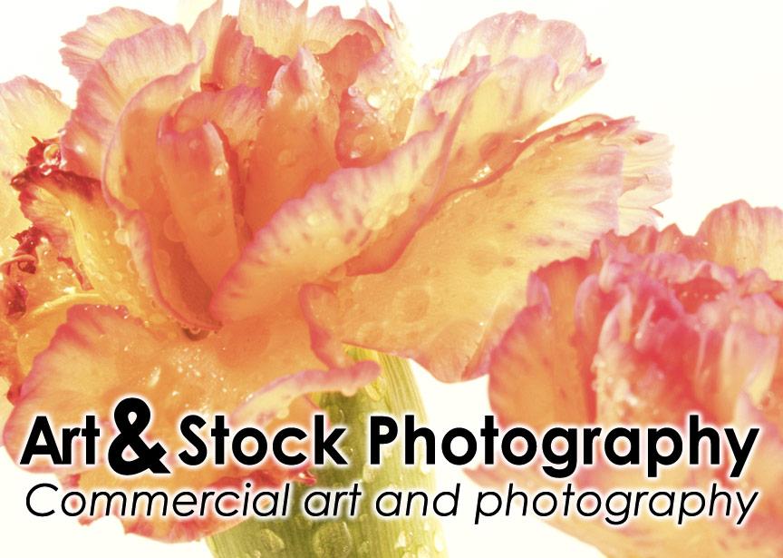 banner-stock-block.jpg