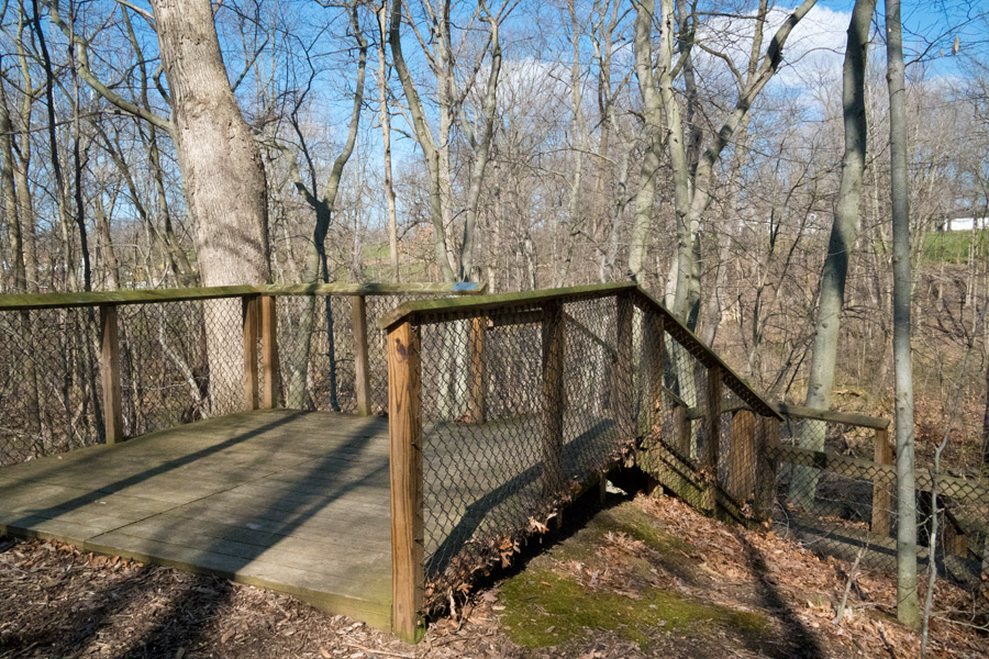 Top of wooden stairway leading down to McCoy Creek. Photo by Joseph Maas